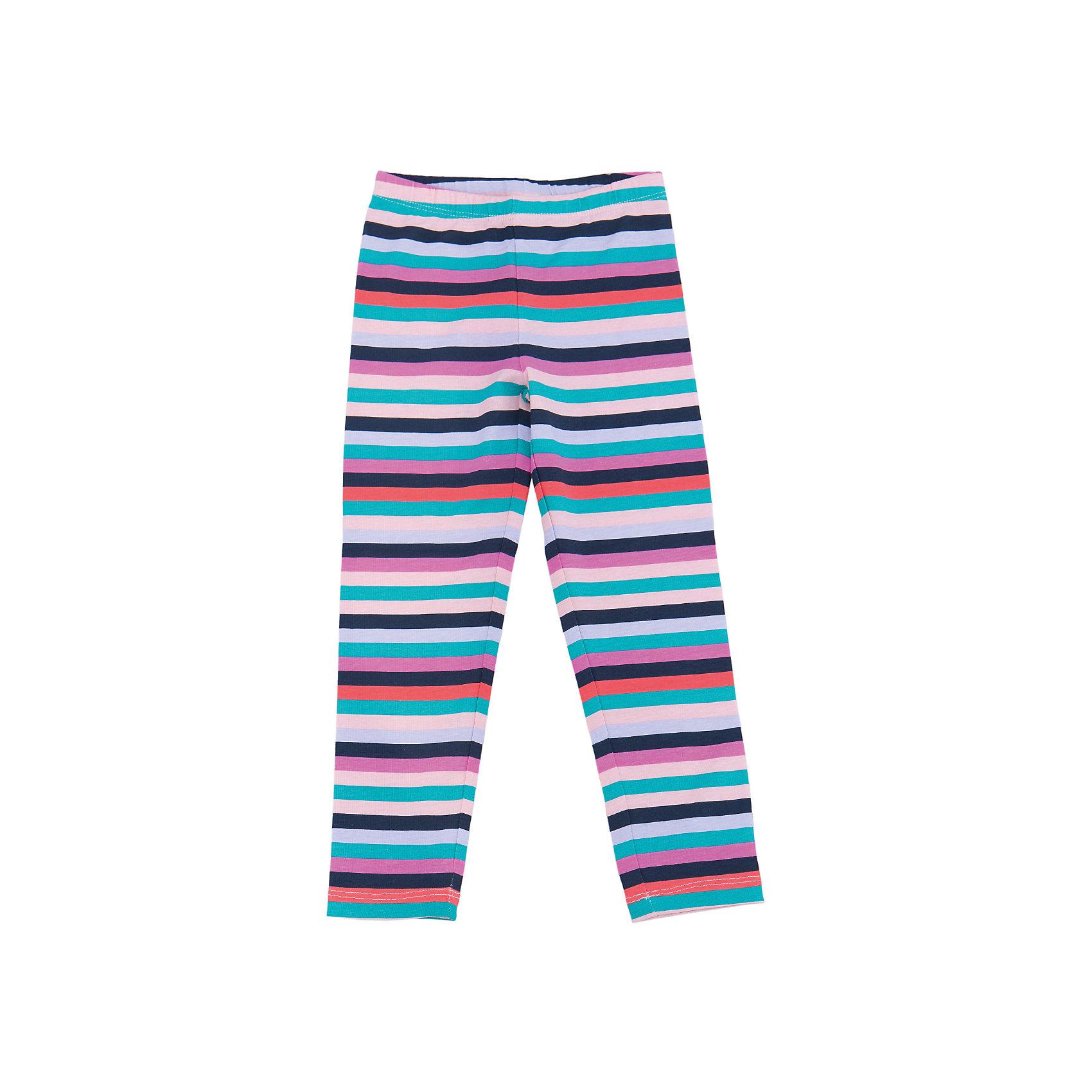 Леггинсы для девочки SELAЛеггинсы<br>Леггинсы - незаменимая вещь в детском гардеробе. Эта модель отлично сидит на ребенке, она сшита из приятного на ощупь материала, натуральный хлопок не вызывает аллергии и обеспечивает ребенку комфорт. Модель станет отличной базовой вещью, которая будет уместна в различных сочетаниях.<br>Одежда от бренда Sela (Села) - это качество по приемлемым ценам. Многие российские родители уже оценили преимущества продукции этой компании и всё чаще приобретают одежду и аксессуары Sela.<br><br>Дополнительная информация:<br><br>материал: хлопок 95%, эластан 5%;<br>эластичный материал;<br>резинка на поясе.<br><br>Леггинсы для девочки от бренда Sela можно купить в нашем интернет-магазине.<br><br>Ширина мм: 215<br>Глубина мм: 88<br>Высота мм: 191<br>Вес г: 336<br>Цвет: розовый<br>Возраст от месяцев: 60<br>Возраст до месяцев: 72<br>Пол: Женский<br>Возраст: Детский<br>Размер: 116,110,92,98,104<br>SKU: 5008099