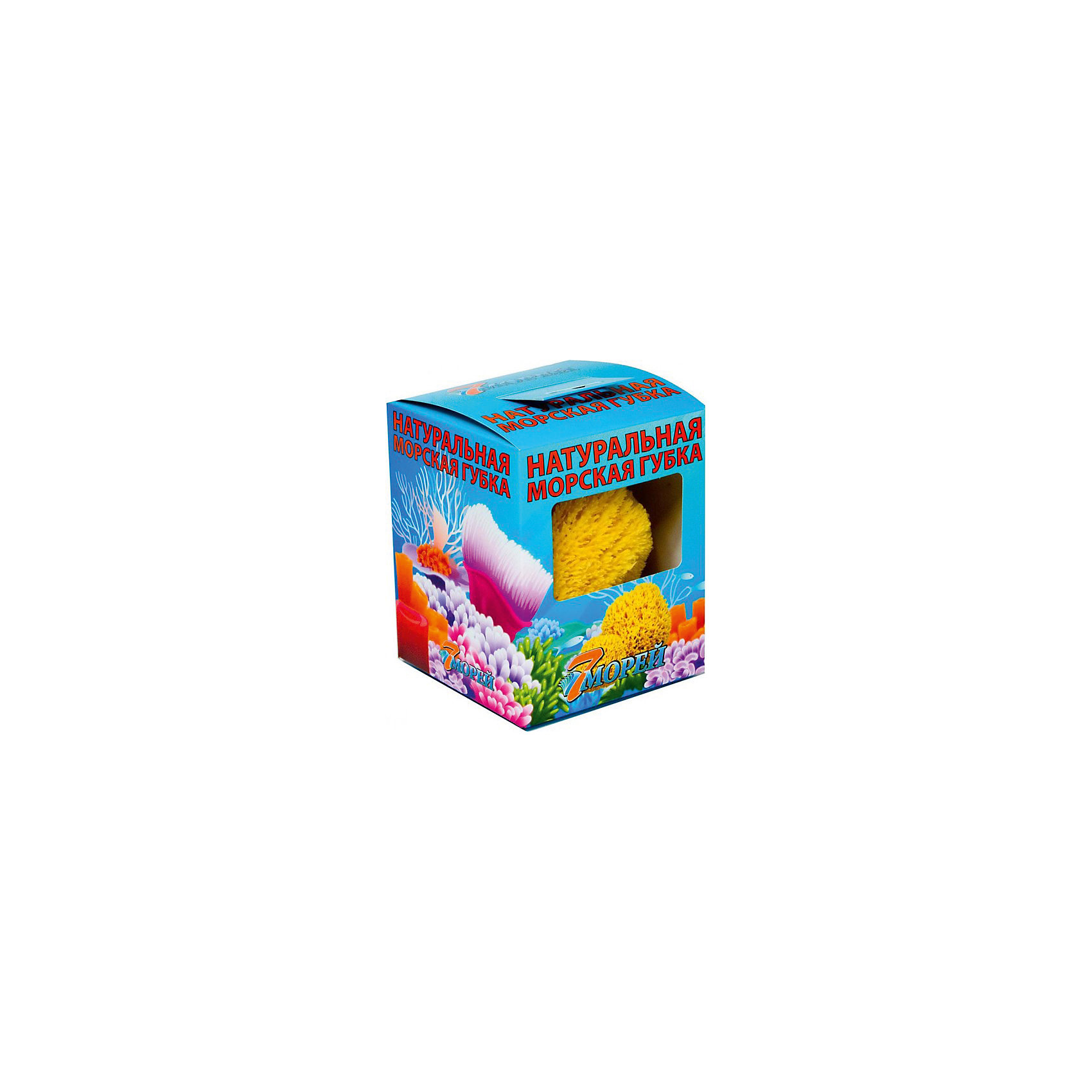 Губка натуральная морская детская в коробке (3.0 - 3.5 дюйма) Хард Тайп, 7 морейПолотенца, мочалки, халаты<br>Губка натуральная морская детская в коробке (3.0 - 3.5 дюйма) Хард Тайп, 7 морей - впустите атмосферу моря и отдыха в ваш дом! Эта особенная мягкая губка натурального происхождения имеет бактерицидные свойства и хорошо подойдет для мытья детей с момента появления на свет. Губка очень бережно и деликатно очищает нежную кожу, благотворно влияя на нее. Морская губка подойдет и родителям, она гипоаллергенна, не высушивает кожу и не провоцирует высыпаний. Пользуясь такой губочкой вы обеспечите более полную чистоту и сэкономите используемое средство для очищения кожи. Такие губки не любят воду очень высокой температуры. Производители не советуют сушку под прямыми солнечными лучами, хранение губки в шапочках для плавания или полиэтиленовых пакетах, а также отжим путем скручивая. Рекомендуется хорошо помыть губку мягким моющим мылом и аккуратно выжать воду.<br><br>Дополнительная информация:<br>- Размер:  примерно 8 * 8 см.<br>- Упакована в коробочку<br><br>Губку натуральную морскую детскую в коробке (3.0 - 3.5 дюйма) Хард Тайп, 7 морей можно купить в нашем интернет-магазине.<br>Подробнее:<br>• Для детей в возрасте: от 0 лет<br>• Номер товара: 5008283 <br>Страна производитель: Российская Федерация<br><br>Ширина мм: 100<br>Глубина мм: 100<br>Высота мм: 50<br>Вес г: 100<br>Возраст от месяцев: 0<br>Возраст до месяцев: 36<br>Пол: Унисекс<br>Возраст: Детский<br>SKU: 5008283