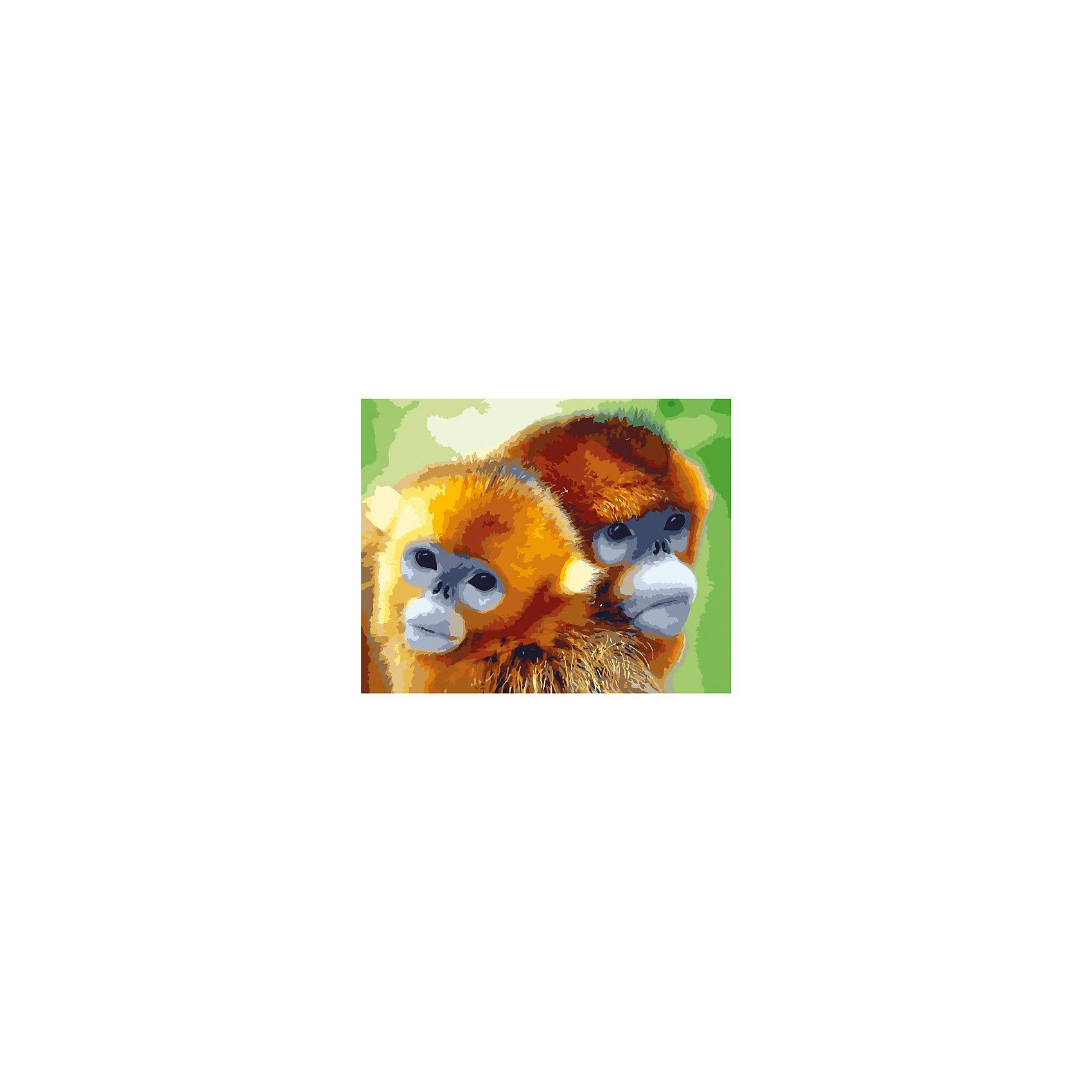 Роспись холста по номерам ОБЕЗЬЯНКИ, 40х50смРаскраски по номерам<br>Добро пожаловать в мир Креатто! Даже если вы никогда не ощущали в себе дара художника, у вас легко получится создать прекрасную картину «Обезьянки». Сделать это сможет любой человек от 7 до 99 лет. Для этого нужно раскрасить пронумерованные фрагменты рисунка пронумерованными цветами красок, которые ровно ложатся на холст и тщательно закрашивают контуры. Рисунок можно сделать интереснее: создайте прозрачность красок, разбавив их водой, и специальные эффекты, раскрасив рисунок в несколько слоев. А если вы что-то напутаете, то исправить ошибку поможет дополнительная схема рисунка. Такое занятие приятно и для детей, и для взрослых. Но главное – это результат: раскрашенная картина великолепно украсит интерьер или станет потрясающим подарком. &#13;<br>В наборе для росписи холста по номерам: холст 40х50 см с нанесенным рисунком, акриловые краски (25 цветов), 3 кисточки, крепежные петли для подвешивания холста, контрольная схема рисунка. Эксклюзивный дизайн. Товар сертифицирован. 7+. Срок годности – 3 года.<br><br>Ширина мм: 500<br>Глубина мм: 400<br>Высота мм: 15<br>Вес г: 479<br>Возраст от месяцев: 84<br>Возраст до месяцев: 144<br>Пол: Унисекс<br>Возраст: Детский<br>SKU: 5016414