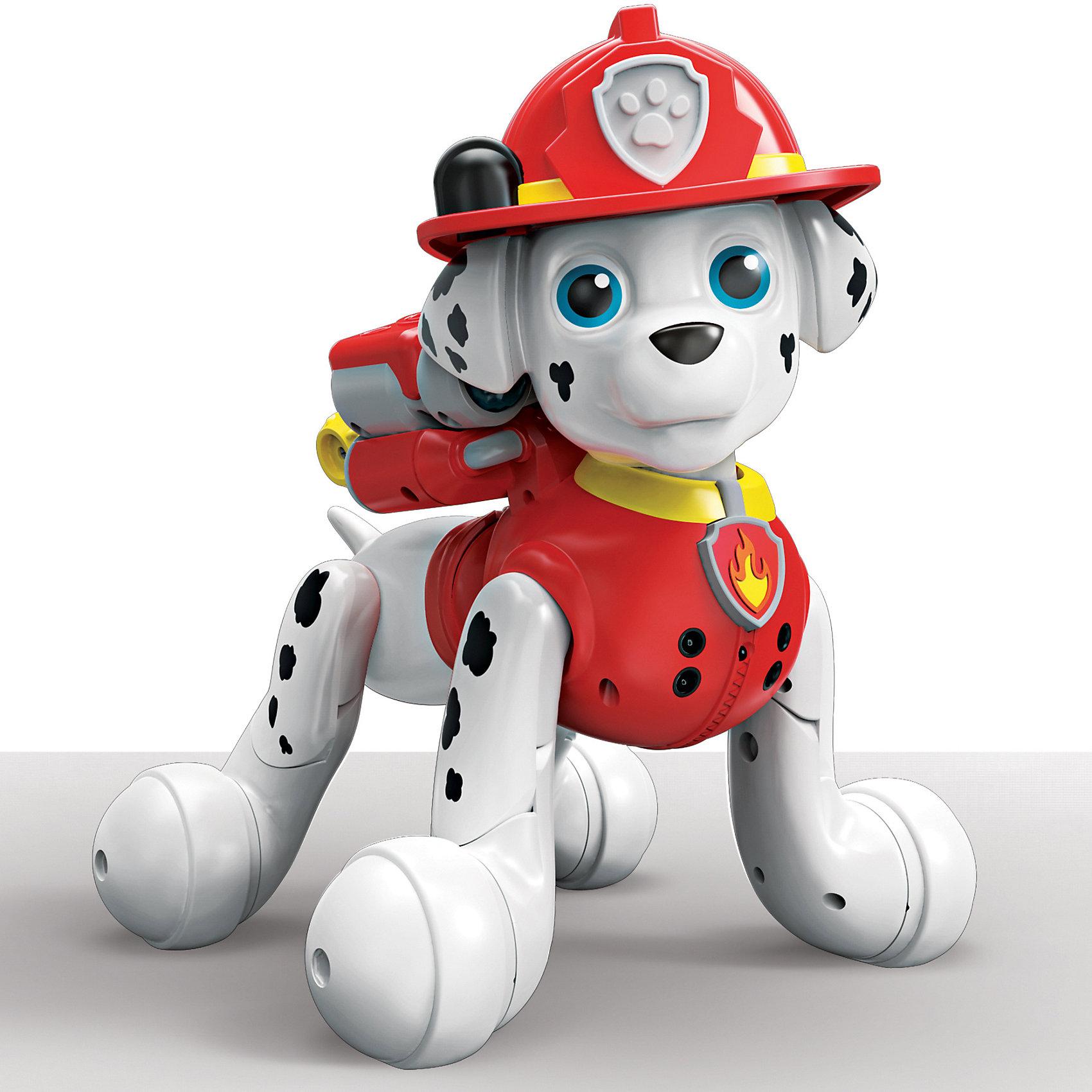 Интерактивная игрушка Маршал, ZoomerРоботы<br>Характеристики товара:<br><br>- цвет: разноцветный;<br>- материал: пластик;<br>- особенности: интерактивная;<br>- размер упаковки: 25х11х20 см.<br><br>Такой интерактивный щенок не оставит ребенка равнодушным! Какой малыш откажется поиграть с щенком-игрушкой в виде любимого героя из мультфильма?! Игрушка отлично детализирована, очень качественно выполнена, поэтому она станет отличным подарком ребенку. Она имеет два режима работы - «Щенок» (произносит 40 наиболее часто употребляемых в мультфильме фраз, функция активизируется нажатием на голову щенка). Второй режим включается нажатием на бейджик спасателя, расположенный на ошейнике (произносит более 120 звуков и фраз, поет песни из мультфильма, танцует, считает, отыгрывает несколько самых известных сюжетов мультфильма.<br>Изделие произведено из высококачественного материала, безопасного для детей.<br><br>Интерактивную игрушку Маршал от бренда Zoomer можно купить в нашем интернет-магазине.<br><br>Ширина мм: 370<br>Глубина мм: 330<br>Высота мм: 250<br>Вес г: 2000<br>Возраст от месяцев: 48<br>Возраст до месяцев: 2147483647<br>Пол: Унисекс<br>Возраст: Детский<br>SKU: 5051998