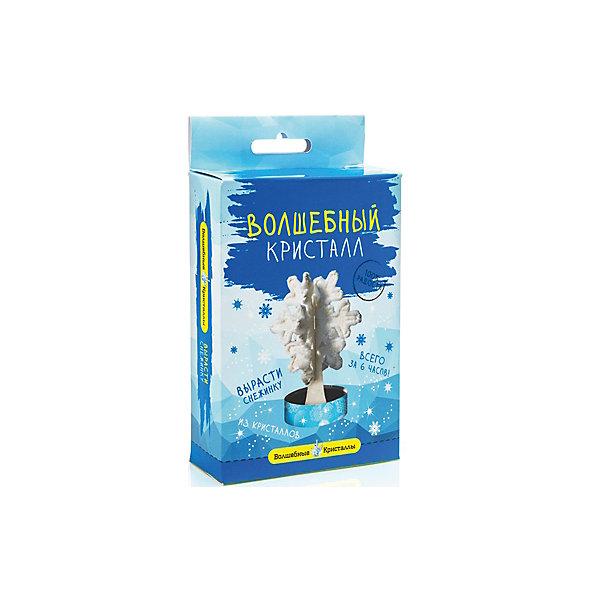 Научный набор Волшебный кристалл - Снежинка БумбарамВыращивание кристаллов<br>Волшебные кристаллы Снежинка, Бумбарам.<br><br>Характеристики:<br><br>• вы можете вырастить снежинку не выходя из дома<br>• набор прост в использовании<br>• безопасен для детей<br>• готовая поделка уже через 6 часов<br>• размер упаковки: 16,5х10х3 см<br>• вес: 50 грамм<br>• в комплекте: основа, подставка из пластика, специальный раствор, инструкция<br>• готовую поделку рекомендуется покрыть лаком<br><br>Волшебные кристаллы Снежинка подарят вам новогоднее настроение. Установите основу на подставку, добавьте специальный раствор в углубление - уже через 6 часов красивая снежинка будет радовать вас своим сиянием. Этот вид творчества непременно порадует ребенка, а готовая поделка приятно украсит интерьер комнаты.<br><br>Волшебные кристаллы Снежинка, Бумбарам вы можете приобрести в нашем интернет-магазине.<br><br>Ширина мм: 170<br>Глубина мм: 100<br>Высота мм: 30<br>Вес г: 50<br>Возраст от месяцев: 72<br>Возраст до месяцев: 144<br>Пол: Унисекс<br>Возраст: Детский<br>SKU: 5053928