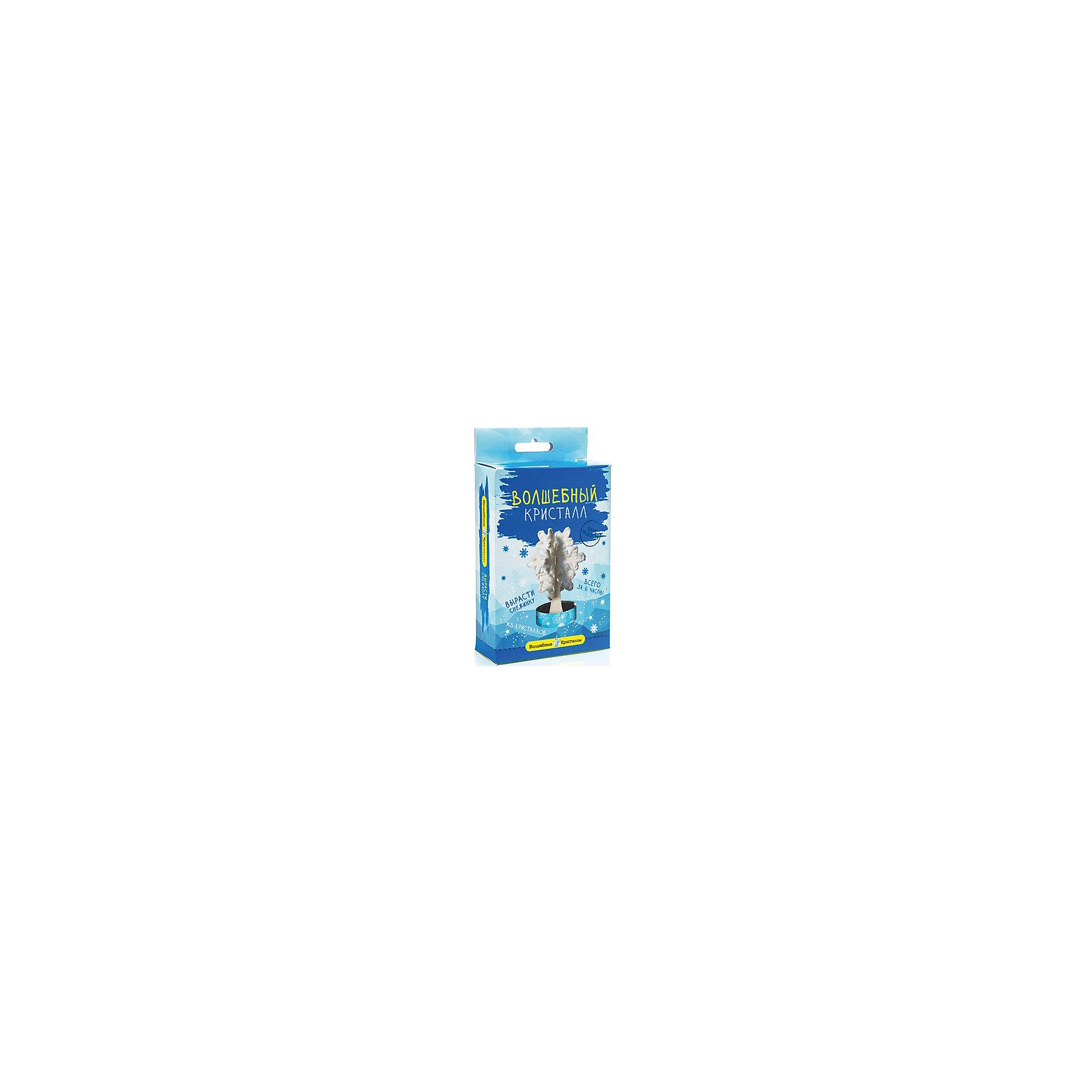 Научный набор Волшебный кристалл - Снежинка БумбарамКристаллы<br>Волшебные кристаллы Снежинка, Бумбарам.<br><br>Характеристики:<br><br>• вы можете вырастить снежинку не выходя из дома<br>• набор прост в использовании<br>• безопасен для детей<br>• готовая поделка уже через 6 часов<br>• размер упаковки: 16,5х10х3 см<br>• вес: 50 грамм<br>• в комплекте: основа, подставка из пластика, специальный раствор, инструкция<br>• готовую поделку рекомендуется покрыть лаком<br><br>Волшебные кристаллы Снежинка подарят вам новогоднее настроение. Установите основу на подставку, добавьте специальный раствор в углубление - уже через 6 часов красивая снежинка будет радовать вас своим сиянием. Этот вид творчества непременно порадует ребенка, а готовая поделка приятно украсит интерьер комнаты.<br><br>Волшебные кристаллы Снежинка, Бумбарам вы можете приобрести в нашем интернет-магазине.<br><br>Ширина мм: 170<br>Глубина мм: 100<br>Высота мм: 30<br>Вес г: 50<br>Возраст от месяцев: 72<br>Возраст до месяцев: 144<br>Пол: Унисекс<br>Возраст: Детский<br>SKU: 5053928