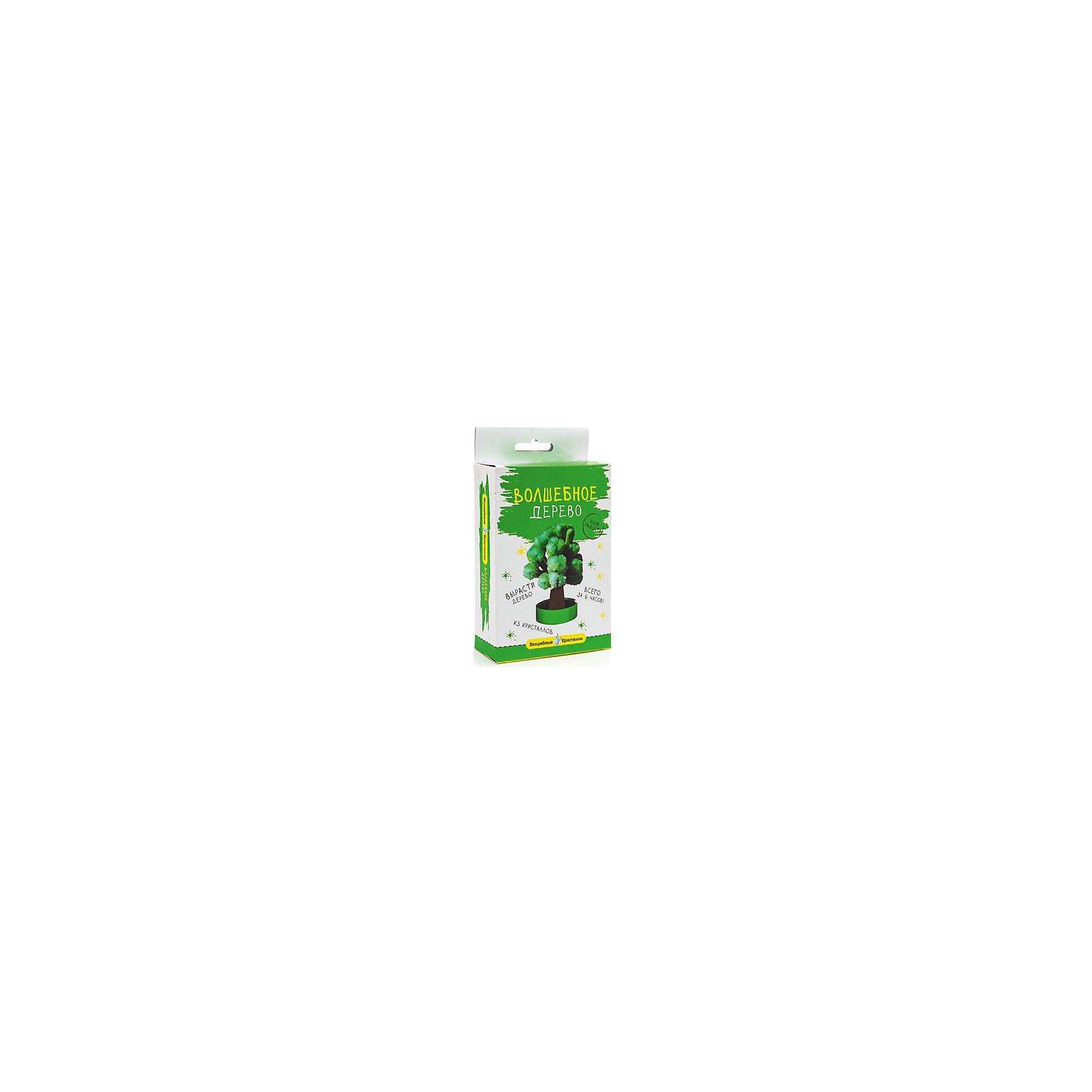 Бумбарам Волшебные кристаллы Зеленое дерево Бумбарам бумбарам набор для творчества копилка раскраска сова бумбарам