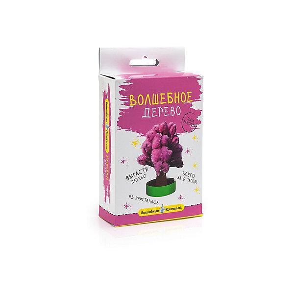 Волшебные кристаллы Розовое дерево БумбарамВыращивание кристаллов<br>Волшебные кристаллы Дерево розовое, Бумбарам<br><br>Характеристики:<br><br>• вы можете вырастить красивое дерево<br>• безопасен для детей<br>• пошаговая инструкция<br>• готовая поделка уже через 6 часов<br>• размер упаковки: 16,5х10х3 см<br>• вес: 50 грамм<br>• в комплекте: основа, подставка из пластика, специальный раствор, инструкция<br>• материалы: реактив, бумага, пластик, картон<br>• готовую поделку рекомендуется покрыть лаком<br><br>Волшебные кристаллы Дерево розовое позволит ребенку создать объемное дерево из кристаллов. Материалы безопасны, а процесс творчества очень прост и доступен каждому. Для этого потребуется закрепить картонную основу на подставке и добавить раствор - через 6 часов объемное дерево готово. Этот вид творчества развивает усидчивость и внимательность. Очаровательное дерево украсит детскую комнату или станет приятным подарком близкому человеку.<br><br>Волшебные кристаллы Дерево розовое, Бумбарам можно купить в нашем интернет-магазине.<br><br>Ширина мм: 170<br>Глубина мм: 100<br>Высота мм: 30<br>Вес г: 50<br>Возраст от месяцев: 72<br>Возраст до месяцев: 144<br>Пол: Унисекс<br>Возраст: Детский<br>SKU: 5053935