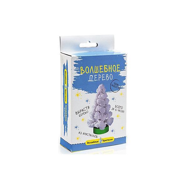 Набор для выращивания кристалов Волшебные кристаллы Елочка белая БумбарамВыращивание кристаллов<br>Волшебные кристаллы Елочка белая, Бумбарам.<br><br>Характеристики:<br><br>• вы можете вырастить красивую елку<br>• безопасен для детей<br>• пошаговая инструкция<br>• готовая поделка уже через 6 часов<br>• размер упаковки: 16,5х10х3 см<br>• вес: 50 грамм<br>• в комплекте: основа, подставка из пластика, специальный раствор, инструкция<br>• материалы: реактив, бумага, пластик, картон<br>• готовую поделку рекомендуется покрыть лаком<br><br>С помощью этого набора Волшебные кристаллы ребенок сможет самостоятельно создать пушистую блестящую елочку своими руками. Для этого нужно соединить основу и подставку и налить специальный раствор. Уже через 6 часов елочка покроется волшебными белыми кристаллами. Все материалы безопасны для ребенка и просты в использовании. Такая елочка украсит комнату и добавит новогоднюю нотку к интерьеру.<br><br>Волшебные кристаллы Елочка белая, Бумбарам можно купить в нашем интернет-магазине.<br><br>Ширина мм: 170<br>Глубина мм: 100<br>Высота мм: 30<br>Вес г: 50<br>Возраст от месяцев: 72<br>Возраст до месяцев: 144<br>Пол: Унисекс<br>Возраст: Детский<br>SKU: 5053937