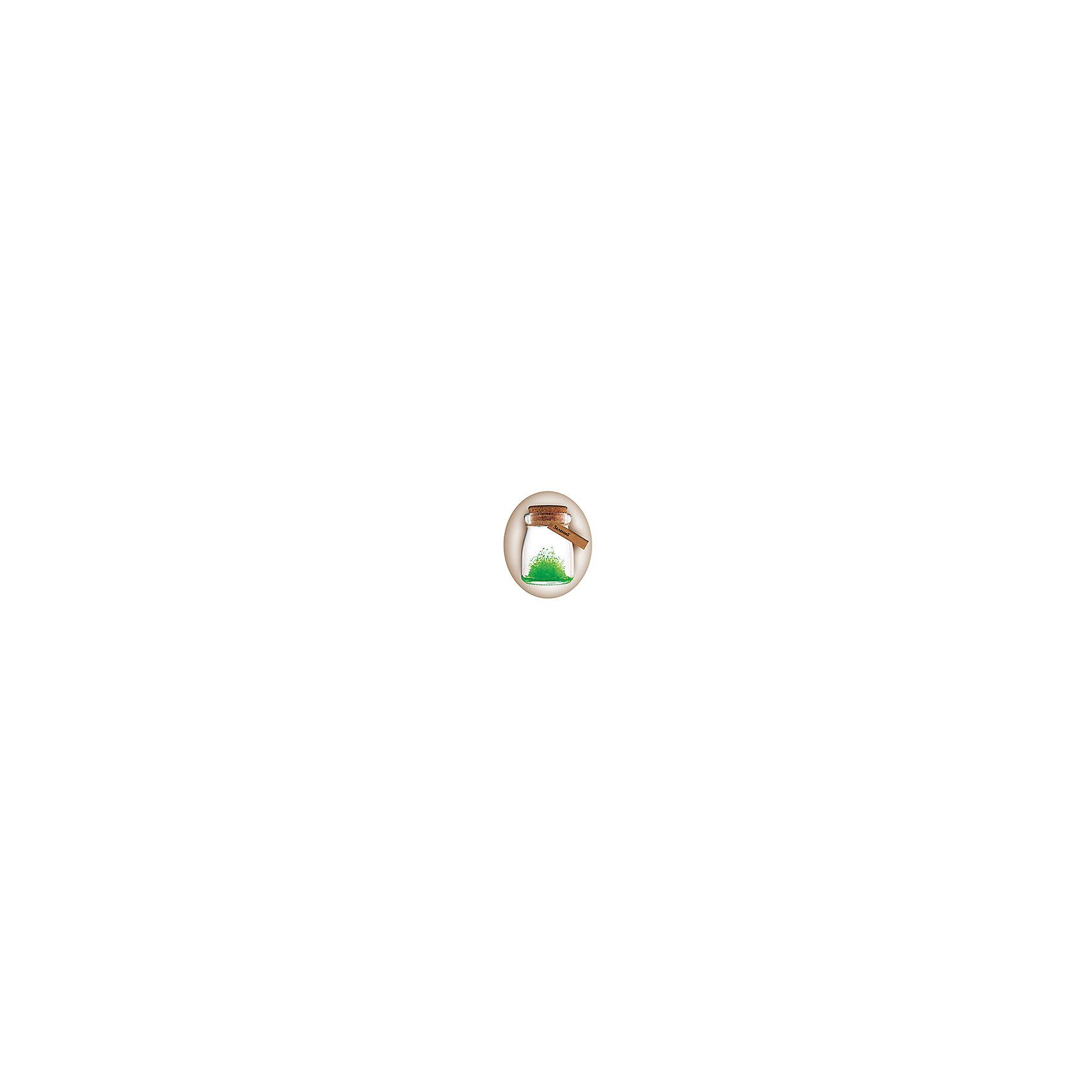Набор для выращивания кристаллов Удивительный кристалл - Зеленый БумбарамКристаллы<br>Удивительный кристалл - Зеленый, Бумбарам<br><br>Характеристики:<br><br>• прост в использовании<br>• пошаговая инструкция<br>• безопасные материалы<br>• привлекательная упаковка <br>• можно следить за процессом<br>• в наборе: баночка, кристаллический порошок, кристаллическая таблетка, палочка, веревочка, пробка, карточка, инструкция<br>• размер упаковки: 15х8 см<br>• вес: 250 грамм<br>• цвет: синий<br><br>Удивительный кристалл - набор для творчества. Он хорошо развивает усидчивость и внимательность. С его помощью ребенок сможет сделать прекрасный подарок своими руками. Инструкция очень проста: нужно налить воды в баночку, добавить в нее порошок и тщательно перемешать. Затем положить волшебную таблетку и закрыть баночку крышкой. Через несколько часов можно снять крышку. Через 14-20 дней волшебный кристалл готов! Готовая композиция особенно красиво смотрится под лампой. Удивительный кристалл - прекрасный выбор для начинающего алхимика!<br><br>Удивительный кристалл - Зеленый, Бумбарам вы можете приобрести в нашем интернет-магазине.<br><br>Ширина мм: 75<br>Глубина мм: 75<br>Высота мм: 150<br>Вес г: 250<br>Возраст от месяцев: 168<br>Возраст до месяцев: 240<br>Пол: Унисекс<br>Возраст: Детский<br>SKU: 5053953