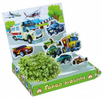 Бумбарам Набор для выращивания Живая открытка - Город машин Happy Plant