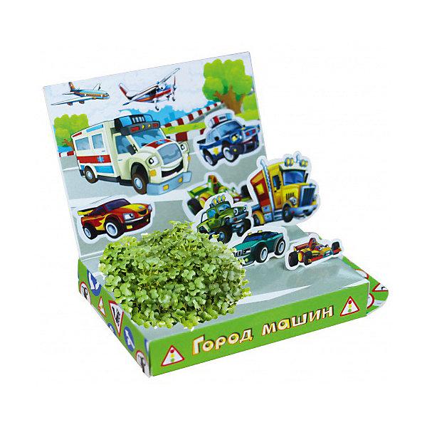 Набор для выращивания Живая открытка - Город машин Happy PlantВыращивание растений<br>Подарочный набор Живая открытка Город машин, Happy Plant.<br><br>Характеристики:<br><br>• ребенок сможет самостоятельно украсить пейзаж травкой<br>• прост в использовании<br>• безопасен для ребенка<br>• яркий дизайн <br>• развивает внимательность и усидчивость<br>• в комплекте: открытка, 3 фигурки, емкость для растений, наклейки, агроткань, семена, инструкция<br>• размер упаковки: 13х8х2,5 см<br>• вес: 30 грамм<br>• материалы: бумага, картон, агроткань, семена<br><br>Набор Живая открытка Город машин идеально подойдет любителям экспериментов и живой природы. С его помощью ребенок сможет украсить открытку настоящими растениями. Процесс преображения очень прост. Нужно намочить агроткань, посадить семена и полить их. Поставьте открытку в теплое светлое место, и через несколько дней на ней вырастет настоящая травка. Это набор станет прекрасным подарком любознательным экспериментаторам!<br><br>Подарочный набор Живая открытка Город машин, Happy Plant вы можете купить в нашем интернет-магазине.<br>Ширина мм: 175; Глубина мм: 115; Высота мм: 25; Вес г: 30; Возраст от месяцев: 168; Возраст до месяцев: 240; Пол: Мужской; Возраст: Детский; SKU: 5053956;