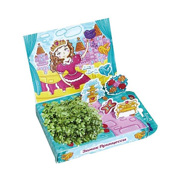 Набор для выращивания Живая открытка - Замок принцессы Happy PlantДетские открытки<br>Подарочный набор Живая открытка Замок принцессы, Happy Plant.<br><br>Характеристики:<br><br>• ребенок сможет самостоятельно украсить пейзаж травкой<br>• прост в использовании<br>• безопасен для ребенка<br>• яркий дизайн <br>• развивает внимательность и усидчивость<br>• в комплекте: открытка, 3 фигурки, емкость для растений, наклейки, агроткань, семена, инструкция<br>• размер упаковки: 13х8х2,5 см<br>• вес: 30 грамм<br>• материалы: бумага, картон, агроткань, семена<br><br>Набор Живая открытка Замок принцессы идеально подойдет любителям экспериментов и живой природы. С его помощью ребенок сможет украсить открытку настоящими растениями. Процесс преображения очень прост. Нужно намочить агроткань, посадить семена и полить их. Поставьте открытку в теплое светлое место, и через несколько дней на ней вырастет настоящая травка. Это набор станет прекрасным подарком любознательным экспериментаторам!<br><br>Подарочный набор Живая открытка Замок принцессы, Happy Plant вы можете купить в нашем интернет-магазине.<br>Ширина мм: 175; Глубина мм: 115; Высота мм: 25; Вес г: 30; Возраст от месяцев: 168; Возраст до месяцев: 240; Пол: Женский; Возраст: Детский; SKU: 5053958;