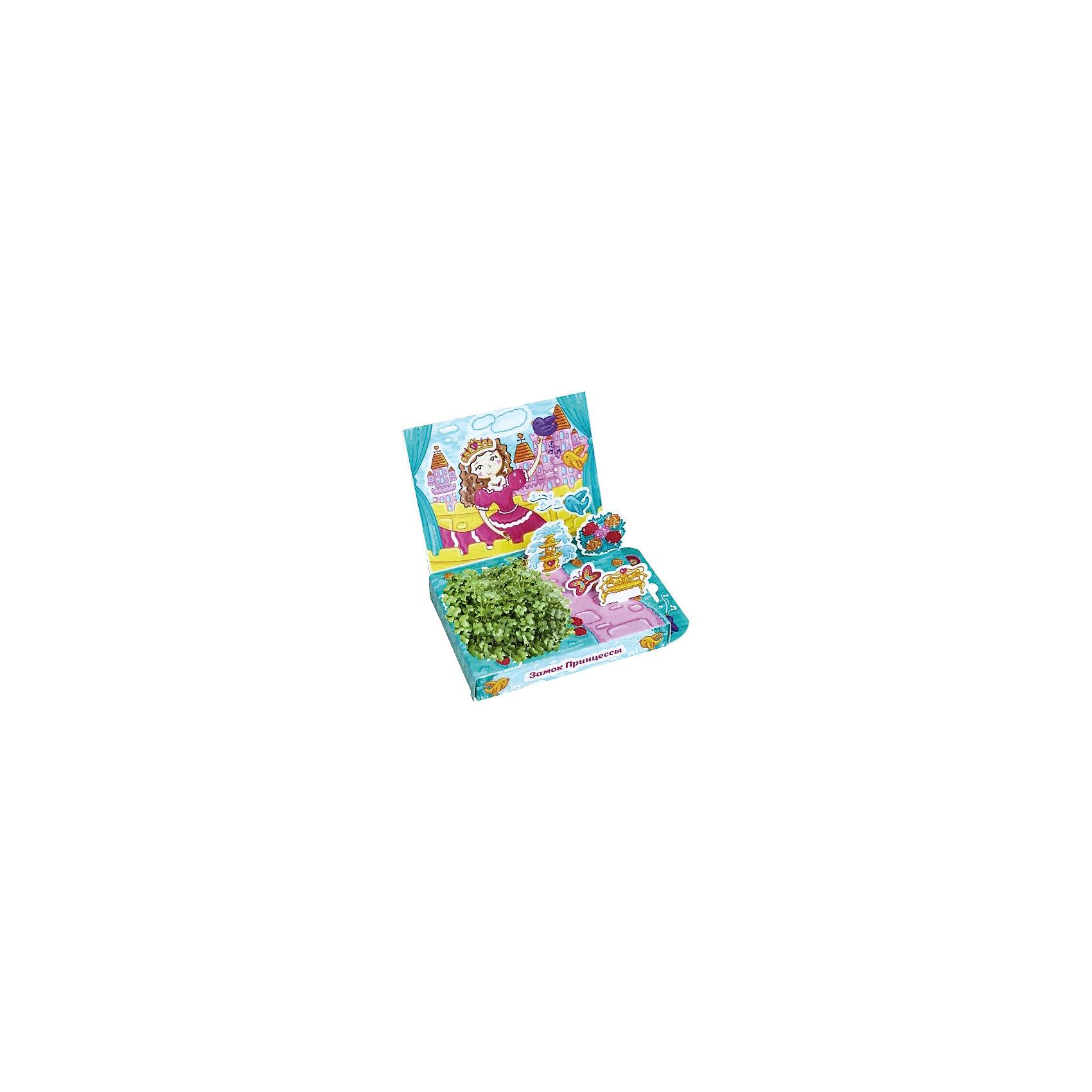 Набор для выращивания Живая открытка - Замок принцессы Happy PlantПодарочный набор Живая открытка Замок принцессы, Happy Plant.<br><br>Характеристики:<br><br>• ребенок сможет самостоятельно украсить пейзаж травкой<br>• прост в использовании<br>• безопасен для ребенка<br>• яркий дизайн <br>• развивает внимательность и усидчивость<br>• в комплекте: открытка, 3 фигурки, емкость для растений, наклейки, агроткань, семена, инструкция<br>• размер упаковки: 13х8х2,5 см<br>• вес: 30 грамм<br>• материалы: бумага, картон, агроткань, семена<br><br>Набор Живая открытка Замок принцессы идеально подойдет любителям экспериментов и живой природы. С его помощью ребенок сможет украсить открытку настоящими растениями. Процесс преображения очень прост. Нужно намочить агроткань, посадить семена и полить их. Поставьте открытку в теплое светлое место, и через несколько дней на ней вырастет настоящая травка. Это набор станет прекрасным подарком любознательным экспериментаторам!<br><br>Подарочный набор Живая открытка Замок принцессы, Happy Plant вы можете купить в нашем интернет-магазине.<br><br>Ширина мм: 175<br>Глубина мм: 115<br>Высота мм: 25<br>Вес г: 30<br>Возраст от месяцев: 168<br>Возраст до месяцев: 240<br>Пол: Женский<br>Возраст: Детский<br>SKU: 5053958