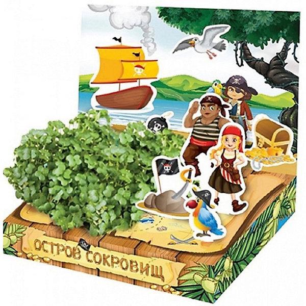 Набор для выращивания Живая открытка - Остров сокровищ Happy PlantДетские открытки<br>Подарочный набор Живая открытка Остров сокровищ, Happy Plant.<br><br>Характеристики:<br><br>• ребенок сможет самостоятельно украсить пейзаж травкой<br>• прост в использовании<br>• безопасен для ребенка<br>• яркий дизайн <br>• развивает внимательность и усидчивость<br>• в комплекте: открытка, 3 фигурки, емкость для растений, наклейки, агроткань, семена, инструкция<br>• размер упаковки: 13х8х2,5 см<br>• вес: 30 грамм<br>• материалы: бумага, картон, агроткань, семена<br><br>Набор Живая открытка Остров сокровищ идеально подойдет любителям экспериментов и живой природы. С его помощью ребенок сможет украсить необитаемый остров живыми растениями. Процесс преображения очень прост. Нужно намочить агроткань, посадить семена и полить их. Поставьте открытку в теплое светлое место, и через несколько дней на ней вырастет настоящая травка. Это набор станет прекрасным подарком любознательным экспериментаторам!<br><br>Подарочный набор Живая открытка Остров сокровищ, Happy Plant вы можете купить в нашем интернет-магазине.<br>Ширина мм: 150; Глубина мм: 80; Высота мм: 25; Вес г: 30; Возраст от месяцев: 168; Возраст до месяцев: 240; Пол: Мужской; Возраст: Детский; SKU: 5053960;