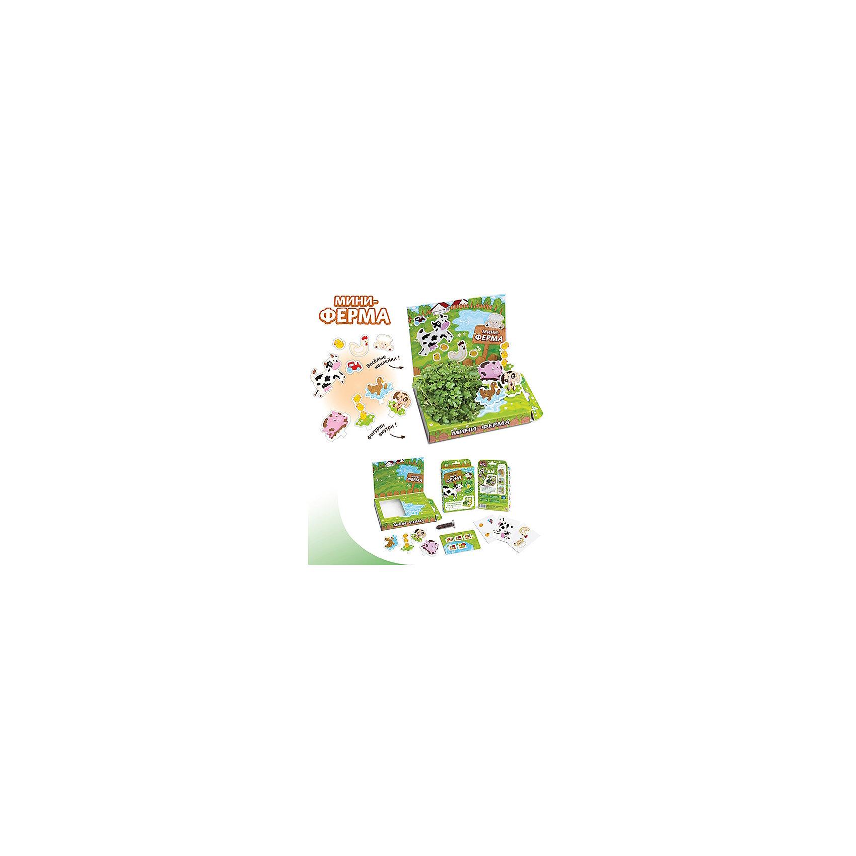 Набор для выращивания Мини-ферма Happy PlantНаборы для выращивания растений<br>Детский развивающий набор для выращивания Мини-ферма, Happy Plant.<br><br>Характеристики:<br><br>• возможность вырастить настоящую травку, не выходя из дома<br>• прост в использовании<br>• подходит в качестве подарка<br>• безопасные материалы<br>• гарантия качества<br>• в комплекте: наклейки, 3 фигурки, семена, контейнер для растений, агроткань<br>• размер упаковки: 15х11х2,5 см<br>• вес: 30 грамм<br><br>Набор Мини-ферма познакомит ребенка с домашними животными и научит его самостоятельно сажать растения и ухаживать за ними. Семена будут прорастать на агроткани и уже через 3-4 дня вы сможете увидеть первые ростки. Еще через несколько дней контейнер преобразится в настоящий сад, за которым нужно ухаживать. Отличный подарок для любознательных детей!<br><br>Детский развивающий набор для выращивания Мини-ферма, Happy Plant вы можете приобрести в нашем интернет-магазине.<br><br>Ширина мм: 175<br>Глубина мм: 115<br>Высота мм: 25<br>Вес г: 30<br>Возраст от месяцев: 168<br>Возраст до месяцев: 240<br>Пол: Унисекс<br>Возраст: Детский<br>SKU: 5053967