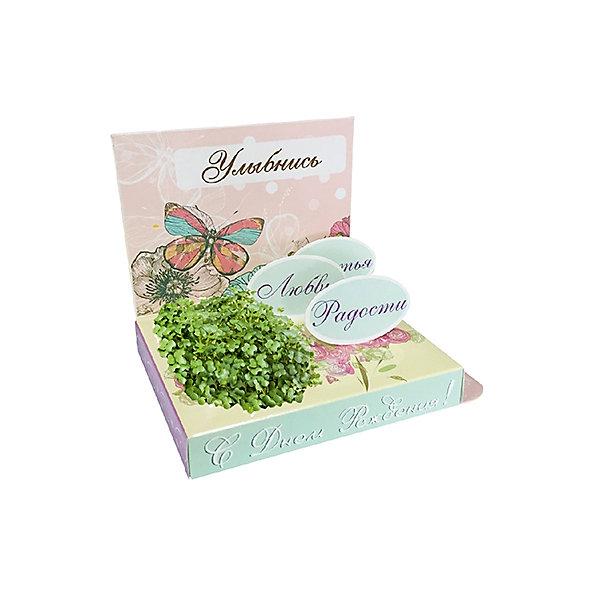 Подарочный набор для выращивания С днем рождения - Бабочка Happy PlantВыращивание растений<br>Подарочный набор С днем рождения! (бабочка), Happy Plant.<br><br>Характеристики:<br><br>• возможность вырастить настоящую травку, не выходя из дома<br>• прост в использовании<br>• подходит в качестве подарка<br>• есть место для поздравительной надписи<br>• безопасные материалы<br>• гарантия качества<br>• в комплекте: открытка, фигурки, семена, контейнер для растений, агроткань<br>• размер упаковки: 15х11х2,5 см<br>• вес: 30 грамм<br><br>Набор С днем рождения станет приятным и необычным подарком близкому человеку. С его помощью ребенок сможет создать свой мини-садик. Благодаря пошаговой инструкции, он не запутается в последовательности процесса. Качественные семена базилика и агроткань гарантируют стопроцентный результат. Открытка украшена красивой бабочкой и поздравительными надписями. Сзади есть специальное место для поздравлений и теплых слов. Такой оригинальный подарок придется по вкусу каждому!<br><br>Подарочный набор С днем рождения! (Бабочка), Happy Plant вы можете купить в нашем интернет-магазине.<br>Ширина мм: 150; Глубина мм: 80; Высота мм: 25; Вес г: 30; Возраст от месяцев: 168; Возраст до месяцев: 240; Пол: Унисекс; Возраст: Детский; SKU: 5053968;