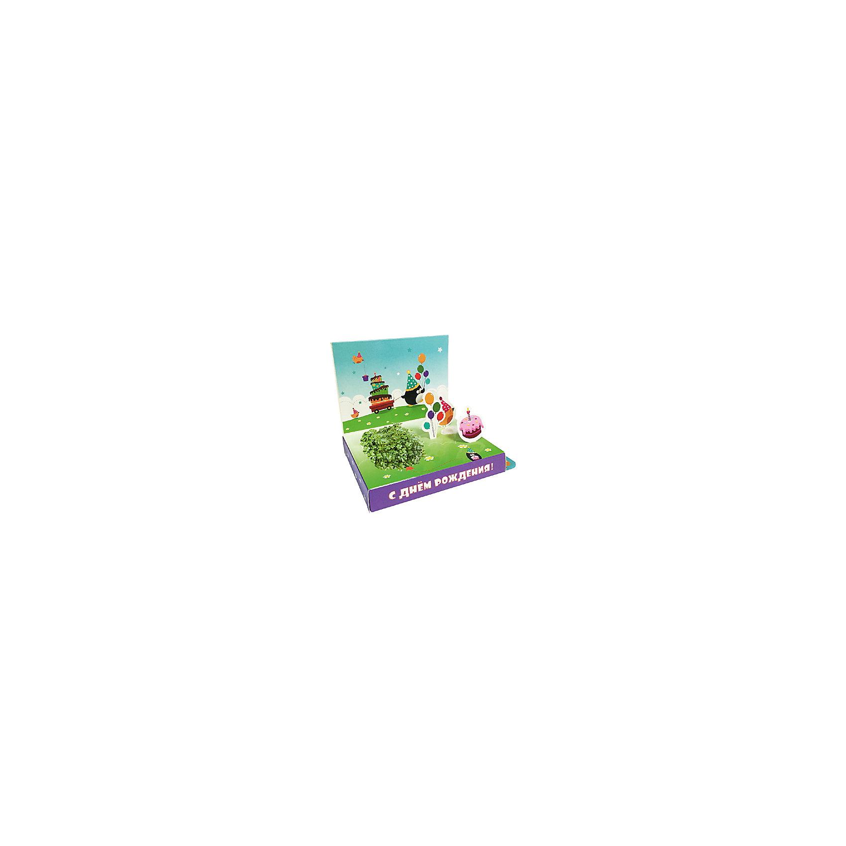 Бумбарам Подарочный набор для выращивания С Днем рождения - Пингвин Happy Plant с днем рождения иллюстр