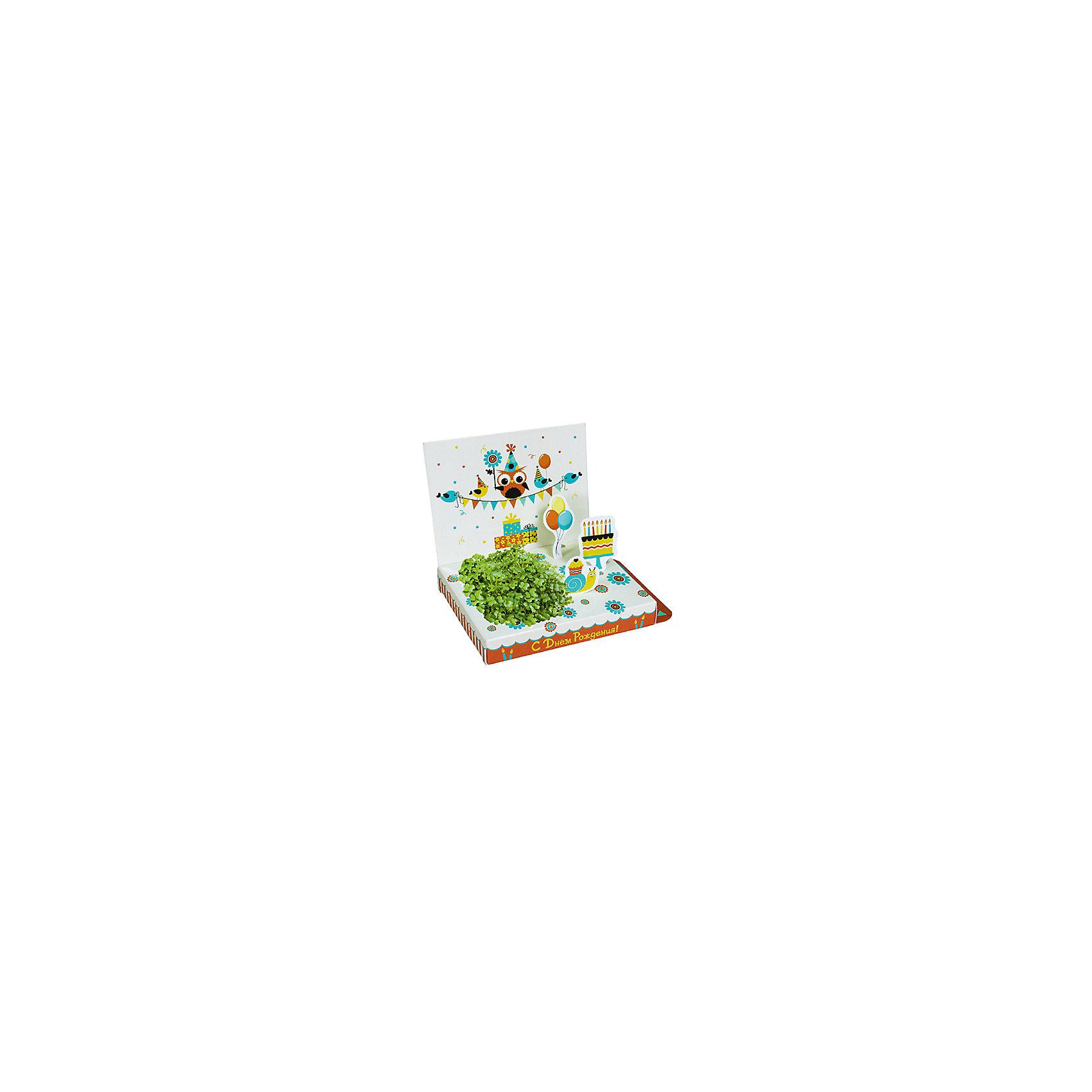 Набор для выращивания С Днем Рождения! - Совенок Happy PlantВыращивание растений<br>Подарочный набор С днем рождения! (Совенок), Happy Plant.<br><br>Характеристики:<br><br>• возможность вырастить настоящую травку, не выходя из дома<br>• прост в использовании<br>• подходит в качестве подарка<br>• есть место для поздравительной надписи<br>• безопасные материалы<br>• гарантия качества<br>• в комплекте: открытка, фигурки, семена, контейнер для растений, агроткань<br>• размер упаковки: 15х11х2,5 см<br>• вес: 30 грамм<br><br>Набор С днем рождения станет приятным и необычным подарком близкому человеку. С его помощью ребенок сможет создать свой мини-садик. Благодаря пошаговой инструкции, он не запутается в последовательности процесса. Качественные семена базилика и агроткань гарантируют стопроцентный результат. Открытка украшена забавным совенком и различными праздничными атрибутами. Сзади есть специальное место для поздравлений и теплых слов. Такой оригинальный подарок придется по вкусу каждому!<br><br>Подарочный набор С днем рождения! (Совенок), Happy Plant вы можете купить в нашем интернет-магазине.<br><br>Ширина мм: 150<br>Глубина мм: 80<br>Высота мм: 25<br>Вес г: 30<br>Возраст от месяцев: 168<br>Возраст до месяцев: 240<br>Пол: Унисекс<br>Возраст: Детский<br>SKU: 5053971