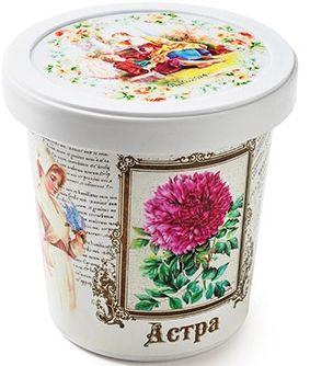 Бумбарам Набор для выращивания Астра Rostok Visa