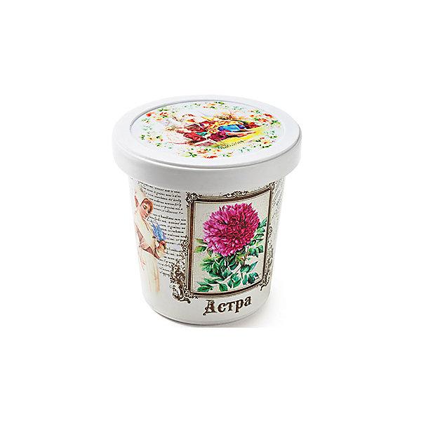 Набор для выращивания Астра Rostok VisaВыращивание растений<br>Астра, Rostok Visa.<br><br>Характеристики:<br><br>• вы сможете выращивать растения у себя дома<br>• экологически чистая продукция<br>• не содержит химикаты<br>• отличная всхожесть<br>• приятный дизайн<br>• в комплекте: горшочек, пакет с семенами, грунт, инструкция<br>• размер упаковки: 7,5х7,5х12 см<br>• вес: 275 грамм<br><br>Набор Астра - прекрасный выбор для любителей красивых растений. С его помощью вы сможете самостоятельно вырастить астру в домашних условиях. Грунт и семена не содержат химикаты, экологически чистые. Красивый горшок в винтажном стиле украсит интерьер комнаты, а астра подарит приятный аромат!<br><br>Набор Астра, Rostok Visa вы можете приобрести в нашем интернет-магазине.<br>Ширина мм: 120; Глубина мм: 75; Высота мм: 75; Вес г: 267; Возраст от месяцев: 168; Возраст до месяцев: 240; Пол: Унисекс; Возраст: Детский; SKU: 5053974;
