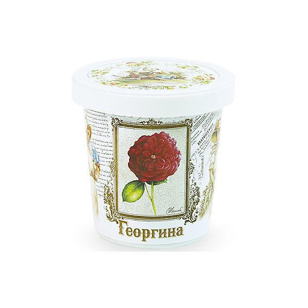 Набор для выращивания Георгина Rostok VisaВыращивание растений<br>Георгина, Rostok Visa.<br><br>Характеристики:<br><br>• вы сможете выращивать растения у себя дома<br>• экологически чистая продукция<br>• не содержит химикаты<br>• отличная всхожесть<br>• приятный дизайн<br>• в комплекте: горшочек, пакет с семенами, грунт, инструкция<br>• размер упаковки: 7,5х7,5х12 см<br>• вес: 275 грамм<br><br>Набор Георгина - прекрасный выбор для любителей красивых растений. С его помощью вы сможете самостоятельно вырастить георгину в домашних условиях. Грунт и семена не содержат химикаты, экологически чистые. Красивый горшок в винтажном стиле украсит интерьер комнаты, а георгина подарит приятный аромат!<br><br>Набор Георгина, Rostok Visa вы можете приобрести в нашем интернет-магазине.<br><br>Ширина мм: 120<br>Глубина мм: 75<br>Высота мм: 75<br>Вес г: 267<br>Возраст от месяцев: 168<br>Возраст до месяцев: 240<br>Пол: Унисекс<br>Возраст: Детский<br>SKU: 5053983