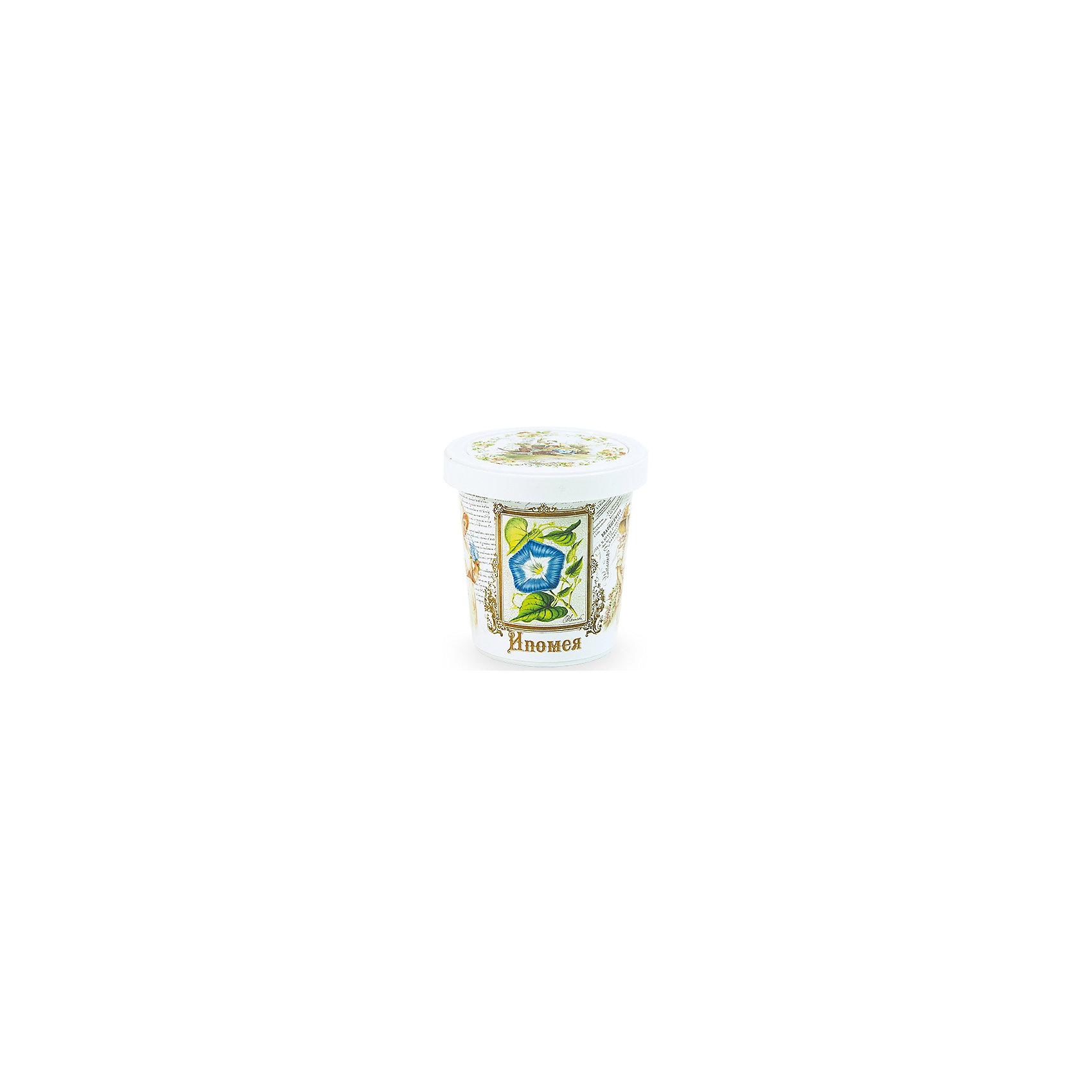 Набор для выращивания Ипомея Rostok VisaНаборы для выращивания растений<br>Ипомея, Rostok Visa.<br><br>Характеристики:<br><br>• вы сможете выращивать растения у себя дома<br>• экологически чистая продукция<br>• не содержит химикаты<br>• отличная всхожесть<br>• приятный дизайн<br>• в комплекте: горшочек, пакет с семенами, грунт, инструкция<br>• размер упаковки: 7,5х7,5х12 см<br>• вес: 275 грамм<br><br>Набор Ипомея подойдет для любителей садоводства. С его помощью ребенок научится выращивать ипомею и ухаживать за ней. Прочитав инструкцию, вы узнаете как именно нужно ухаживать за растением. Процесс выращивания понравится ребенку, а взрослое растение в оригинальном горшочке украсит вашу комнату!<br><br>Набор Ипомея, Rostok Visa вы можете купить в нашем интернет-магазине.<br><br>Ширина мм: 120<br>Глубина мм: 75<br>Высота мм: 75<br>Вес г: 267<br>Возраст от месяцев: 168<br>Возраст до месяцев: 240<br>Пол: Унисекс<br>Возраст: Детский<br>SKU: 5053984