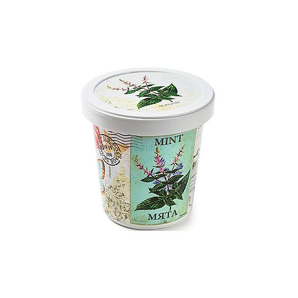 Набор для выращивания Мята Rostok VisaВыращивание растений<br>Мята, Rostok Visa.<br><br>Характеристики:<br><br>• вы сможете выращивать растения у себя дома<br>• экологически чистая продукция<br>• не содержит химикаты<br>• отличная всхожесть<br>• приятный дизайн<br>• в комплекте: горшочек, пакет с семенами, грунт, инструкция<br>• размер упаковки: 7,5х7,5х12 см<br>• вес: 275 грамм<br><br>Если вы хотите продлить дачный сезон, то набор Мята отлично подойдет вам! С его помощью вы сможете вырастить мяту в домашних условиях. Продукция качественная и экологически чистая, что гарантирует высокую всхожесть. Подробная инструкция расскажет как правильно ухаживать за растением. Прекрасный подарок любителям садоводства!<br><br>Набор Мята, Rostok Visa можно купить в нашем интернет-магазине.<br>Ширина мм: 120; Глубина мм: 75; Высота мм: 75; Вес г: 267; Возраст от месяцев: 168; Возраст до месяцев: 240; Пол: Унисекс; Возраст: Детский; SKU: 5053985;