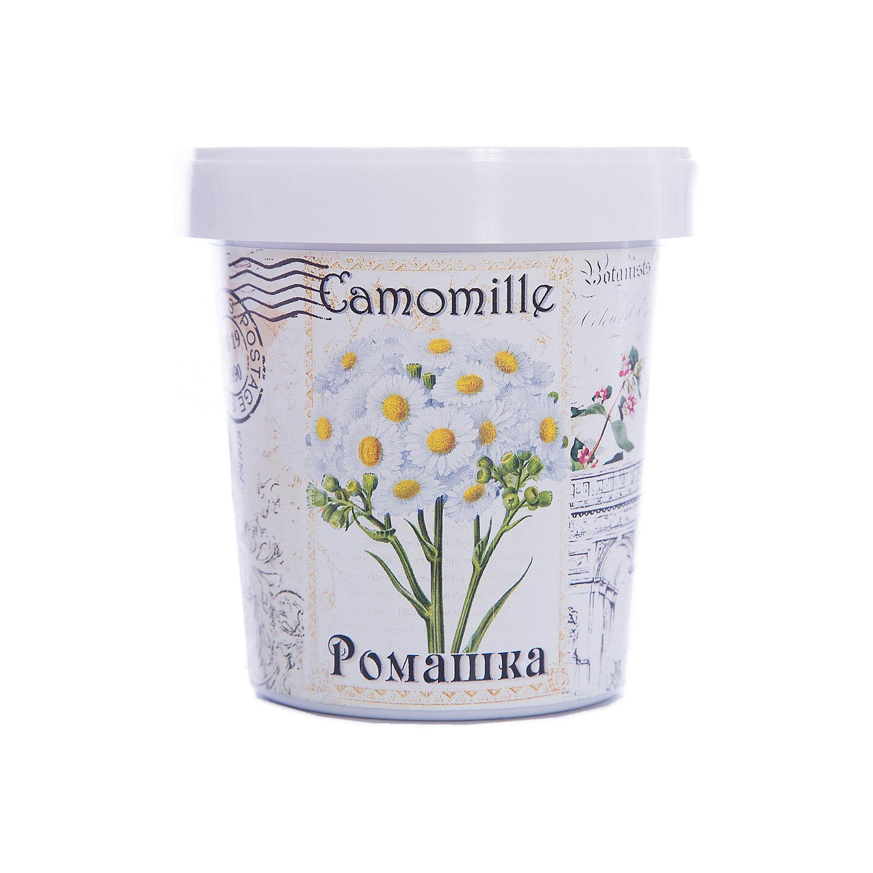 Набор для выращивания Ромашка Rostok VisaВыращивание растений<br>Ромашка, Rostok Visa<br><br>Характеристики:<br><br>• вы сможете выращивать растения у себя дома<br>• экологически чистая продукция<br>• не содержит химикаты<br>• отличная всхожесть<br>• приятный дизайн<br>• в комплекте: горшочек, пакет с семенами, грунт, инструкция<br>• размер упаковки: 7,5х7,5х12 см<br>• вес: 275 грамм<br><br>Если вы хотите продлить дачный сезон, то набор Ромашка отлично подойдет вам! С его помощью вы сможете вырастить ромашку в домашних условиях. Продукция качественная и экологически чистая, что гарантирует высокую всхожесть. Подробная инструкция расскажет как правильно ухаживать за растением. Прекрасный подарок любителям садоводства!<br><br>Набор Ромашка, Rostok Visa можно купить в нашем интернет-магазине.<br><br>Ширина мм: 120<br>Глубина мм: 75<br>Высота мм: 75<br>Вес г: 267<br>Возраст от месяцев: 168<br>Возраст до месяцев: 240<br>Пол: Унисекс<br>Возраст: Детский<br>SKU: 5053986