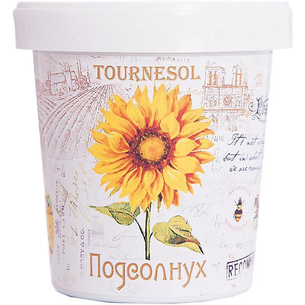 Набор для выращивания Подсолнечник Rostok VisaВыращивание растений<br>Подсолнечник, Rostok Visa.<br><br>Характеристики:<br><br>• вы сможете выращивать растения у себя дома<br>• экологически чистая продукция<br>• не содержит химикаты<br>• отличная всхожесть<br>• приятный дизайн<br>• в комплекте: горшочек, пакет с семенами, грунт, инструкция<br>• размер упаковки: 7,5х7,5х12 см<br>• вес: 275 грамм<br><br>Набор Подсолнечник подойдет для любителей садоводства. С его помощью ребенок научится выращивать подсолнечник и ухаживать за ним. Прочитав инструкцию, вы узнаете как именно нужно ухаживать за растением. Процесс выращивания понравится ребенку, а взрослое растение в оригинальном горшочке украсит вашу комнату!<br><br>Набор Подсолнечник, Rostok Visa вы можете купить в нашем интернет-магазине.<br>Ширина мм: 120; Глубина мм: 75; Высота мм: 75; Вес г: 267; Возраст от месяцев: 168; Возраст до месяцев: 240; Пол: Унисекс; Возраст: Детский; SKU: 5053987;