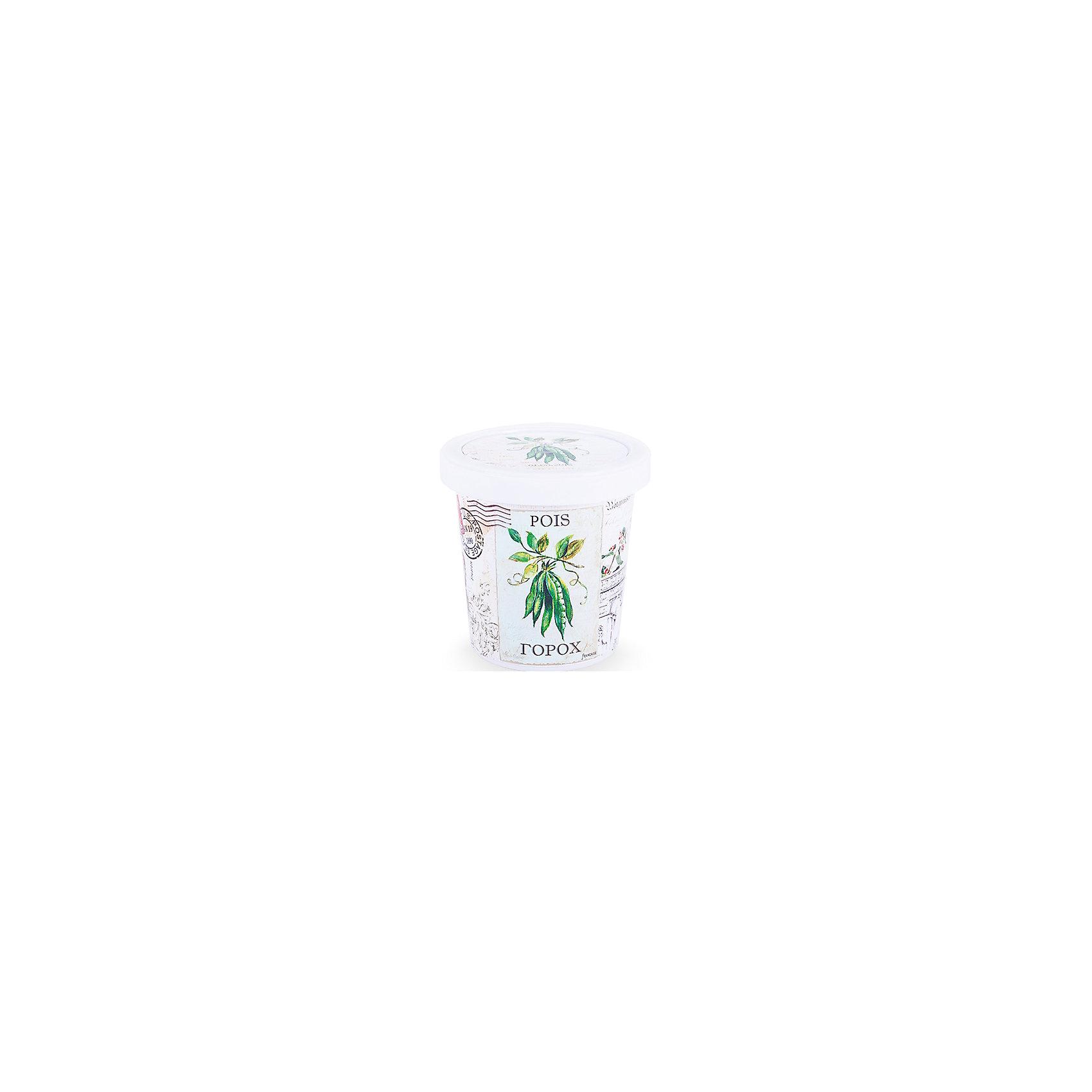 Набор для выращивания Горох Rostok VisaНаборы для выращивания растений<br>Горох, Бумбарам.<br><br>Характеристики:<br><br>• вы сможете выращивать растения у себя дома<br>• экологически чистая продукция<br>• не содержит химикаты<br>• отличная всхожесть<br>• приятный дизайн<br>• в комплекте: горшочек, пакет с семенами, грунт, инструкция<br>• размер упаковки: 7,5х7,5х12 см<br>• вес: 275 грамм<br><br>Если вы хотите продлить дачный сезон у себя дома, то набор для выращивания Горох станет прекрасным подарком для вас. С его помощью вы сможете вырастить настоящий горох в домашних условиях. Продукция экологически чистая и гарантирует высокую всхожесть. Выросшее растение порадует вас вполне съедобными плодами. Такой набор - прекрасный повод для продолжения дачного сезона!<br><br>Набор Горох, Бумбарам можно купить в нашем интернет-магазине.<br><br>Ширина мм: 120<br>Глубина мм: 75<br>Высота мм: 75<br>Вес г: 267<br>Возраст от месяцев: 168<br>Возраст до месяцев: 240<br>Пол: Унисекс<br>Возраст: Детский<br>SKU: 5053990