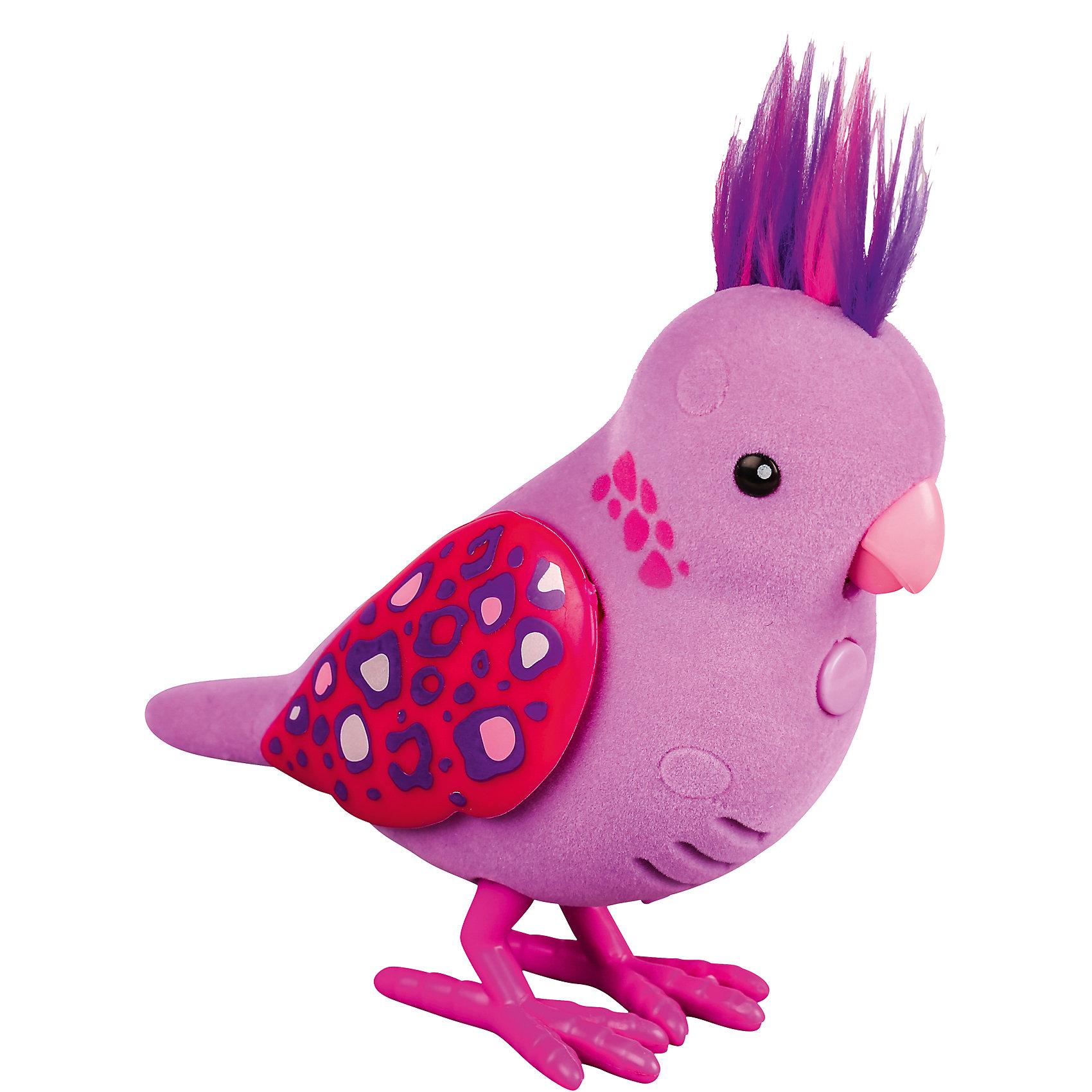 Интерактивная птичка, розовая с драгоценными камушками на крыльях, Little Live PetsИнтерактивная птичка, розовая с драгоценными камушками на крыльях, Little Live Pets (Литтл лайв петс) от австралийского бренда Moose (Мус). Новая яркая игрушка – птичка, очень приятна на ощупь, ее тельце как будто сделано из бархата. Лапки сделаны как настоящие с небольшим рифлением и изгибами. Красивый хохолок птички отлично сочетается с яркими крылышками. Птичка может щебетать до тридцати собственных мелодий, и щебечет от поглаживания по спинке. Движения клювиком совпадают с щебетанием птички, что выглядит очень правдоподобно. Нажав на кнопку на грудке птички и дождавшись двойного щебета, птичка станет учить вашу фразу или мелодию. Фраза воспроизводится модифицированным голосом птички, что тоже выглядит очень правдоподобно. С птичкой можно придумать много игр и почувствовать, будто дома появился новый домашний питомец. Игрушка поможет развить воображение и творческие навыки. <br><br>Дополнительная информация:<br><br>- В комплект входит: 1 птичка в блистере<br>- Состав: пластик, флок<br>- Элементы питания: 2 батарейки типа ААА (в комплекте отсутствуют)<br>- 30 различных стилей щебетания<br>- Можно записывать свои фразы<br>- Параметры упаковки: 22 * 5 * 14 см. <br><br><br>Интерактивную птичку, розовая с драгоценными камушками на крыльях, Little Live Pets (Литтл лайв петс), Moose (Мус) можно купить в нашем интернет-магазине.<br>Подробнее:<br>• Для детей в возрасте: от 5 до 8 лет <br>• Номер товара: 5055291<br>Страна производитель: Китай<br><br>Ширина мм: 55<br>Глубина мм: 140<br>Высота мм: 220<br>Вес г: 150<br>Возраст от месяцев: 60<br>Возраст до месяцев: 120<br>Пол: Унисекс<br>Возраст: Детский<br>SKU: 5055291