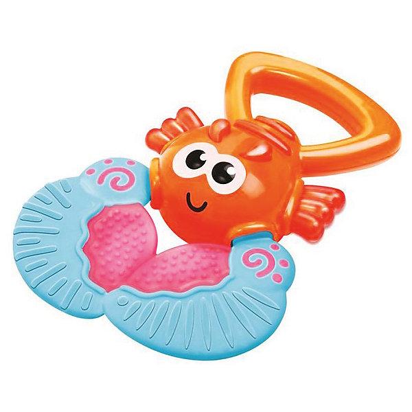 Игрушка Веселый лобстер, BKidsФигурки из мультфильмов<br>Характеристики:<br><br>• прорезыватель с удобной ручкой-держателем;<br>• рельефная поверхность прорезывателя;<br>• сочетание пластика и полипропилена: плотный и гибкий материал;<br>• материал: пластик;<br>• размер игрушки: 10х13х3 см. <br><br>Развивающая игрушка с прорезывателем помогает малышу отвлечься от боли, когда десна воспалены и режутся зубки. Широкое основание прорезывателя имеет рельефное строение. Когда ребенок захватывает прорезыватель ротиком, происходит легкий массаж, который позволяет облегчить страдания крохи и немного снижает болезненность воспаленных десен.   <br> <br>Игрушка Веселый лобстер, BKids можно купить в нашем интернет-магазине.<br>Ширина мм: 101; Глубина мм: 101; Высота мм: 20; Вес г: 72; Возраст от месяцев: 0; Возраст до месяцев: 36; Пол: Унисекс; Возраст: Детский; SKU: 5055396;