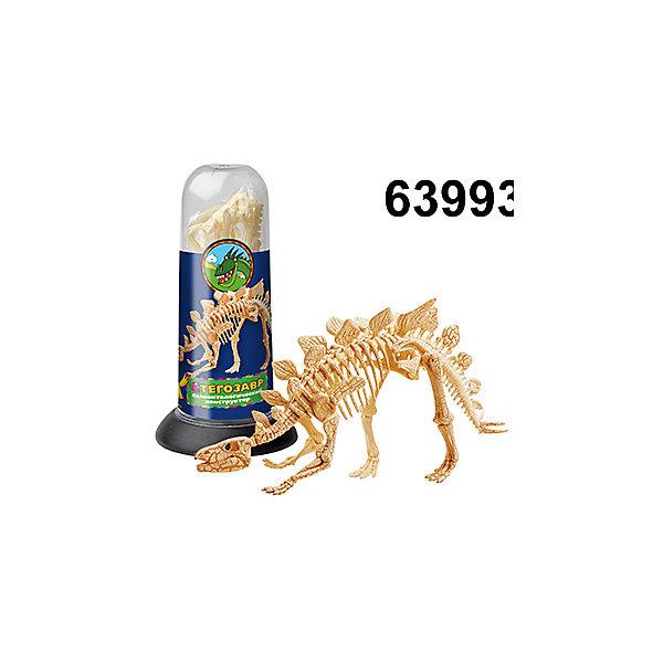 Палеонтологический конструктор - Стегозавр, Kribly BooБренды конструкторов<br>Палеонтологический конструктор - Стегозавр, Kribly Boo (Крибли Бу).<br><br>Характеристики:<br><br>- Количество деталей: 8<br>- Материал: пластмасса<br>- Точная копия скелета динозавра<br>- Удобная упаковка для хранения деталей<br>- Размер упаковки: 18х9х9 см.<br><br>Конструктор от Kribly Boo (Крибли Бу) по достоинству оценит каждый начинающий палеонтолог. В процессе игры ребенку предстоит собрать скелет Стегозавра. Этот травоядный динозавр является одним из самых узнаваемых, благодаря шипам на хвосте и костяным пластинам на спине. Готовая фигурка послужит хорошим пособием для изучения доисторического животного, ведь она является точной копией настоящего скелета Стегозавра. Удобная упаковка-тубус позволит хранить все детали вместе, не теряя их.<br><br>Палеонтологический конструктор - Стегозавр, Kribly Boo (Крибли Бу) можно купить в нашем интернет-магазине.<br><br>Ширина мм: 180<br>Глубина мм: 90<br>Высота мм: 90<br>Вес г: 20<br>Возраст от месяцев: 60<br>Возраст до месяцев: 120<br>Пол: Унисекс<br>Возраст: Детский<br>SKU: 5059081