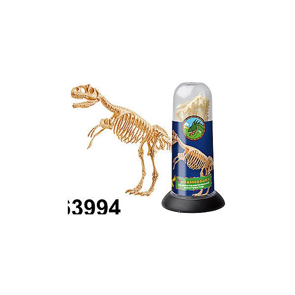 Палеонтологический конструктор - Тираннозавр, Kribly BooБренды конструкторов<br>1 фигурка динозавра, разобранная на составные части (10 элементов)<br><br>Ширина мм: 180<br>Глубина мм: 90<br>Высота мм: 90<br>Вес г: 20<br>Возраст от месяцев: 60<br>Возраст до месяцев: 120<br>Пол: Унисекс<br>Возраст: Детский<br>SKU: 5059082