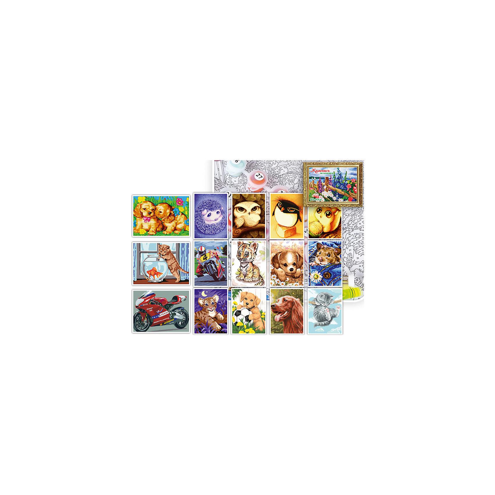 Набор для раскрашивания по номерам 30*40 см МИКС 12 (ДЕТСКАЯ СЕРИЯ-2)Последняя цена<br>Характеристики товара:<br><br>• комплектация: краски, кисти, основа<br>• размер картины: 30х40 см<br>• упаковка: коробка <br>• материал: картон<br>• размер упаковки: 32x42x4 см<br>• возраст: от трех лет<br>• развивающий<br>• страна бренда: Российская Федерация<br>• страна производства: Китай<br><br>Такой набор станет отличным подарком ребенку! Творчество - удачный способ занять детей. Это не только занимательно, но и очень полезно! С помощью такого набора ребенок сможет сам создать красивую картину. Нужно всего лишь следовать инструкции! Это несложно и увлекательно, достаточно нанести краски с помощью кисточек на пронумерованные участки - всё необходимое есть в наборе. Готовое изделие может стать подарком от ребенка на праздник для близких и родственников!<br>Такое занятие помогает детям развивать многие важные навыки и способности: они тренируют внимание, память, логику, мышление, мелкую моторику, творческие способности, а также усидчивость и аккуратность. Изделие производится из качественных сертифицированных материалов, безопасных даже для самых маленьких.<br><br>Набор для раскрашивания по номерам 30*40 см МИКС 12 (ДЕТСКАЯ СЕРИЯ-2) от бренда TUKZAR можно купить в нашем интернет-магазине.<br><br>Ширина мм: 320<br>Глубина мм: 420<br>Высота мм: 40<br>Вес г: 900<br>Возраст от месяцев: 36<br>Возраст до месяцев: 2147483647<br>Пол: Унисекс<br>Возраст: Детский<br>SKU: 5069884