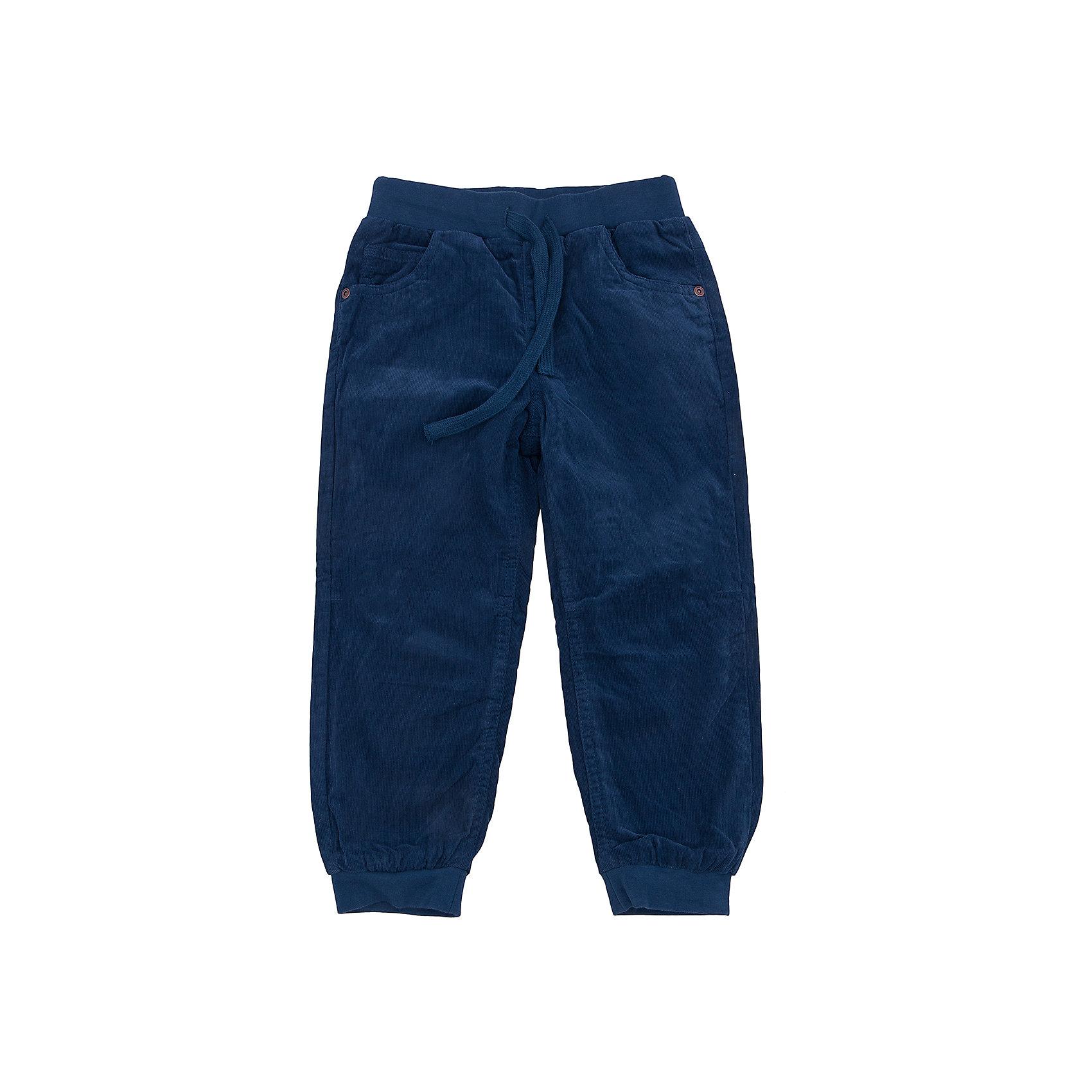 Брюки для мальчика SELAБрюки для мальчика SELA.<br><br>Характеристики:<br><br>• Цвет: синий.<br>• Материал: вельвет.<br>• Состав:100% хлопок.<br><br>Брюки для мальчика от признанного лидера по созданию коллекций одежды в стиле casual - SELA.<br>Стильные вельветовые брюки темно - синего цвета с подкладом из натурального хлопка. Модель на эластичном поясе с кулиской имеет два боковых кармана, два накладных кармашка сзади, мягкие манжеты-резинки по низу. В таких брючках ваш мальчик будет выглядеть стильно и модно! <br><br>Брюки для мальчика SELA, можно купить в нашем интернет- магазине.<br><br>Ширина мм: 215<br>Глубина мм: 88<br>Высота мм: 191<br>Вес г: 336<br>Цвет: синий<br>Возраст от месяцев: 48<br>Возраст до месяцев: 60<br>Пол: Мужской<br>Возраст: Детский<br>Размер: 110,104,98,92,116<br>SKU: 5078974