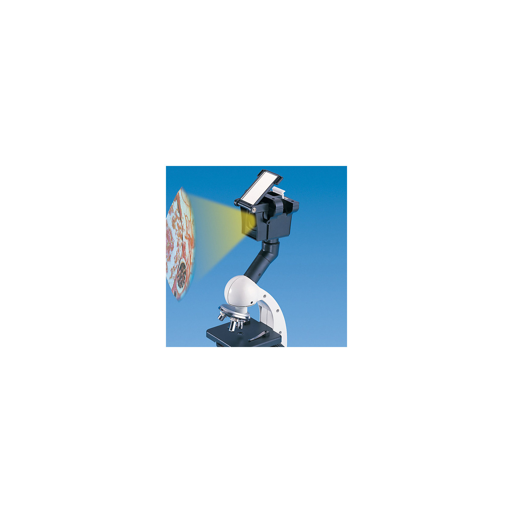 Микроскоп 100*900 EDU-TOYS от myToys