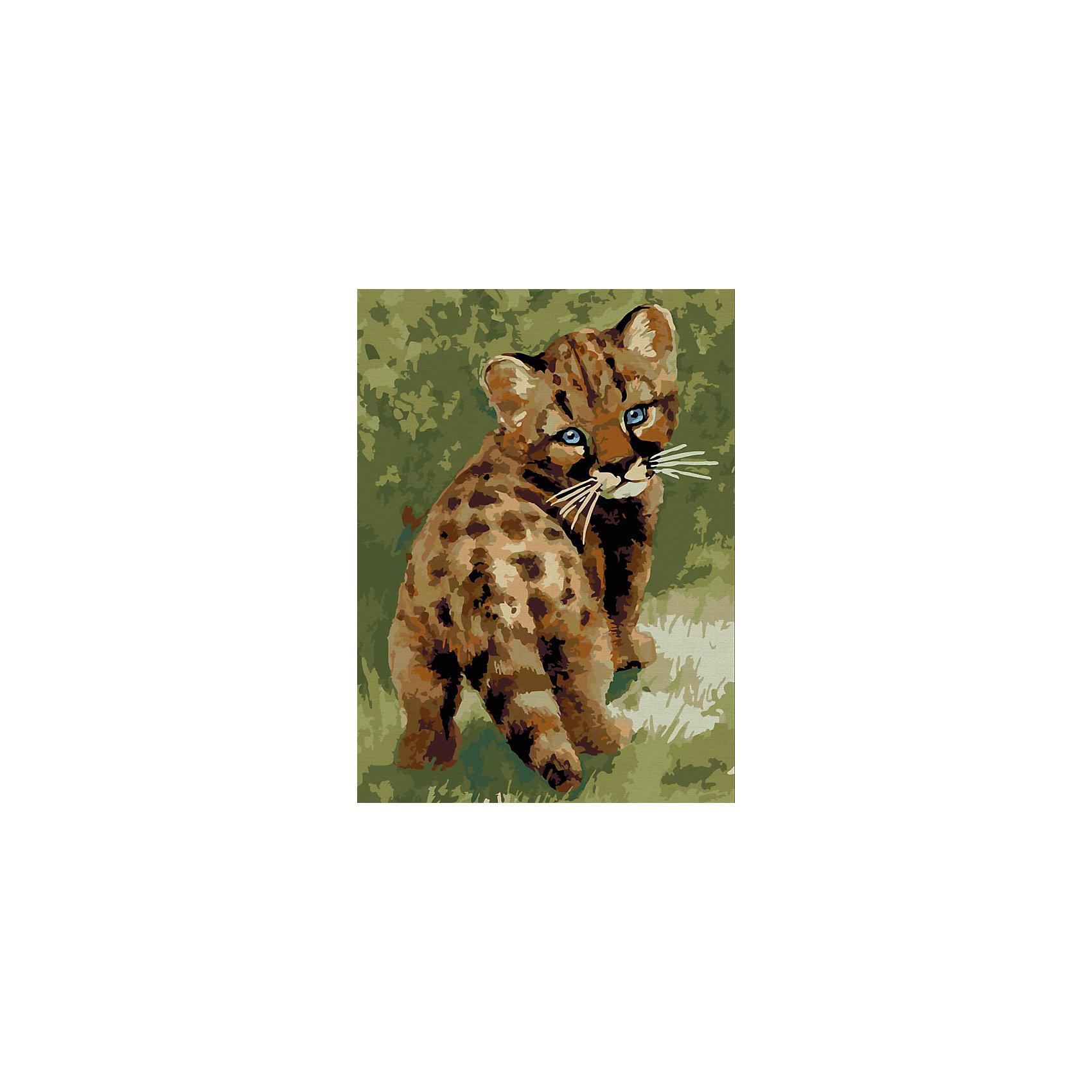 Живопись на холсте 30*40 см Детеныш леопардаРисование<br>Характеристики товара:<br><br>• цвет: разноцветный<br>• материал: акрил, картон<br>• размер: 30 x 40 см<br>• комплектация: полотно на подрамнике с контурами рисунка, пробный лист с рисунком, набор акриловых красок, три кисти, крепление на стену для картины<br>• для детей от шести лет и взрослых<br>• не требует специальных навыков<br>• страна бренда: Китай<br>• страна изготовитель: Китай<br><br>Рисование - это занятие, которое любят многие дети и взрослые. Оно помогает развить важные навыки и просто приносит удовольствие! Чтобы вселить в ребенка уверенность в своих силах, можно предложить ему этот набор - в нем уже есть сюжет, контуры рисунка и участки с номерами, которые обозначают определенную краску из набора. Все оттенки уже готовы, задача художника - аккуратно, с помощью кисточек из набора, нанести краски на определенный участок полотна.<br>Взрослым также понравится этот процесс, рисовать можно и вместе с малышом! В итоге получается красивая картина, которой можно украсить интерьер. Рисование способствует развитию мелкой моторики, воображения, цветовосприятия, творческих способностей и усидчивости. Набор отлично проработан, сделан из качественных и проверенных материалов, которые безопасны для детей. Краски - акриловые, они быстро сохнут и легко смываются с кожи.<br><br>Живопись на холсте 30*40 см Детеныш леопарда от торговой марки Белоснежка можно купить в нашем интернет-магазине.<br><br>Ширина мм: 410<br>Глубина мм: 310<br>Высота мм: 25<br>Вес г: 567<br>Возраст от месяцев: 72<br>Возраст до месяцев: 144<br>Пол: Унисекс<br>Возраст: Детский<br>SKU: 5089630