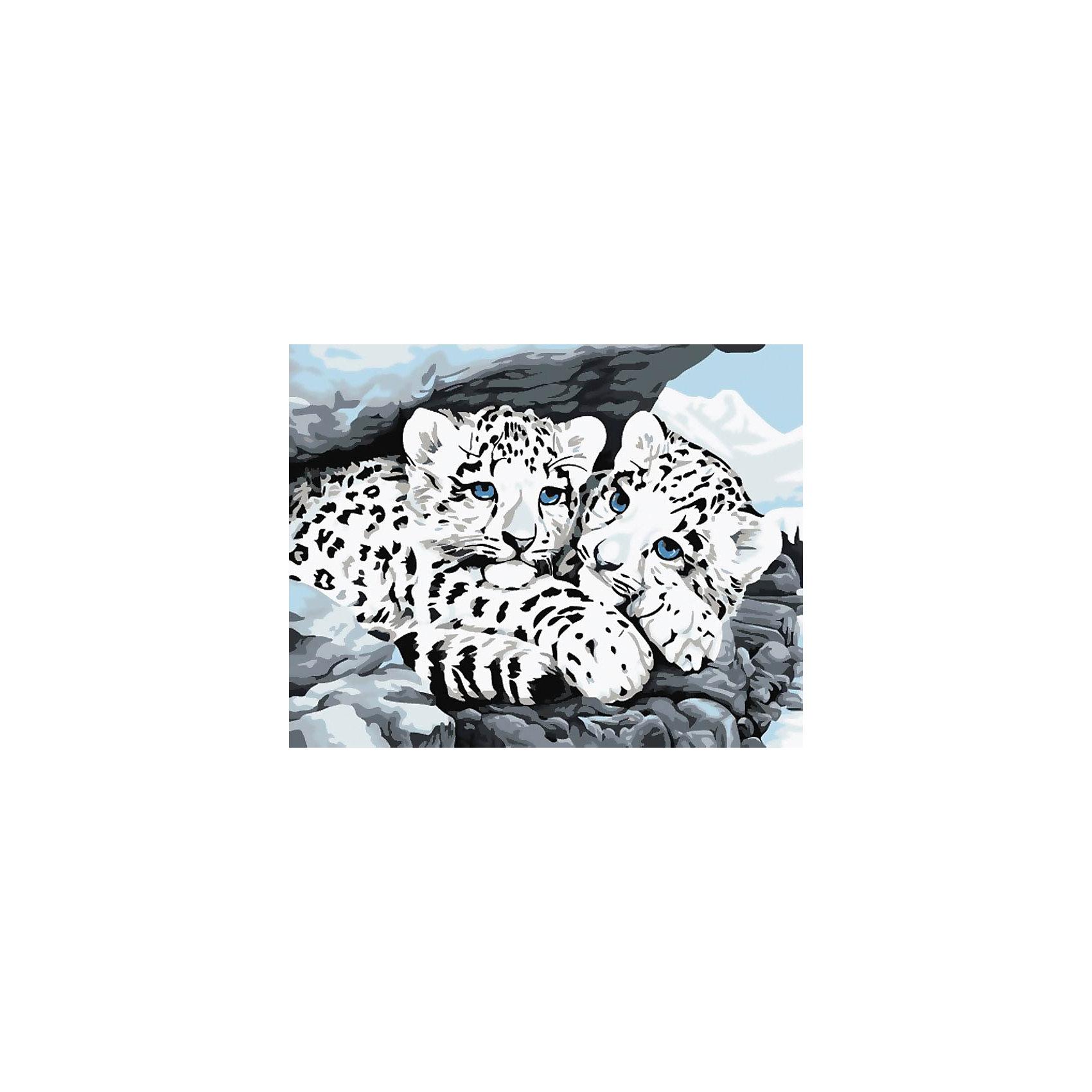 Белоснежка Живопись на холсте 30*40 см Снежные леопарды наборы для рисования белоснежка живопись на холсте 30х40 см сова с ключиком 125 as