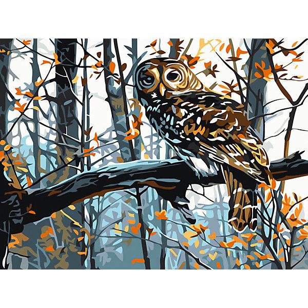 Живопись на холсте 30*40 см СоваРаскраски по номерам<br>Характеристики:<br><br>• Предназначение: для занятий художественным творчеством<br>• Тематика: птицы<br>• Пол: универсальный<br>• Материал: дерево, бумага, краски<br>• Цвет: коричневый, оранжевый, белый, серый, черный, голубой и др.<br>• Комплектация: холст на подрамнике, набор акриловых красок, 2 кисти, пробный лист с нанесенным рисунком, крепление для готовой картины, инструкция<br>• Размеры (Ш*Д): 30*40 см<br>• Вес: 480 г <br>• Упаковка: картонная коробка<br><br>Живопись на холсте 30*40 см Сова – это набор от торговой марки Белоснежка, специализирующейся на товарах для творчества и рукоделия. Комплект для живописи состоит из черно-белого холста на подрамнике из дерева, набора необходимых акриловых красок, двух кистей разного размера и пробного листа. На холст и пробный лист нанесен рисунок с указанием номера соответствующей цвету краски. Акриловые краски хорошо ложатся на холст, не растекаются и не смешиваются, что делает их идеальными для начинающих художников. Все материалы, используемые в наборе, экологичные и натуральные. Готовые наборы научат вашего ребенка сочетать цвета и оттенки, действовать по заданному образцу, будут способствовать развитию внимательности, усидчивости и зрительному восприятию. <br>Занятия художественным творчеством являются не только средством творческого и эстетического развития, но также воспитания и коррекции эмоциональных комплексов у детей. <br><br>С наборами живописи на холсте от Белоснежки можно создать свою галерею картин или подготовить подарок родным и близким к празднованию торжества.<br><br>Живопись на холсте 30*40 см Сова можно купить в нашем интернет-магазине.<br><br>Ширина мм: 410<br>Глубина мм: 310<br>Высота мм: 25<br>Вес г: 567<br>Возраст от месяцев: 72<br>Возраст до месяцев: 144<br>Пол: Унисекс<br>Возраст: Детский<br>SKU: 5089681