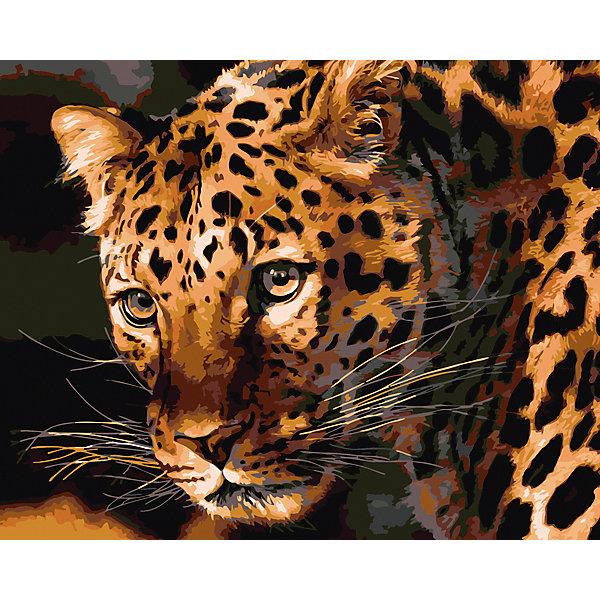 Холст с красками по номерам Взгляд леопарда 40х50 смРаскраски по номерам<br>замечательные наборы для создания уникального шедевра изобразительного искусства. Создание картин на специально подготовленной рабочей поверхности – это уникальная техника, позволяющая делать Ваши шедевры более яркими и реалистичными. Просто нанесите мазки на уже готовый эскиз и оживите картину! Готовые изделия могут стать украшением интерьера или прекрасным подарком близким и друзьям.<br>Ширина мм: 510; Глубина мм: 410; Высота мм: 25; Вес г: 1800; Возраст от месяцев: 36; Возраст до месяцев: 108; Пол: Унисекс; Возраст: Детский; SKU: 5096758;