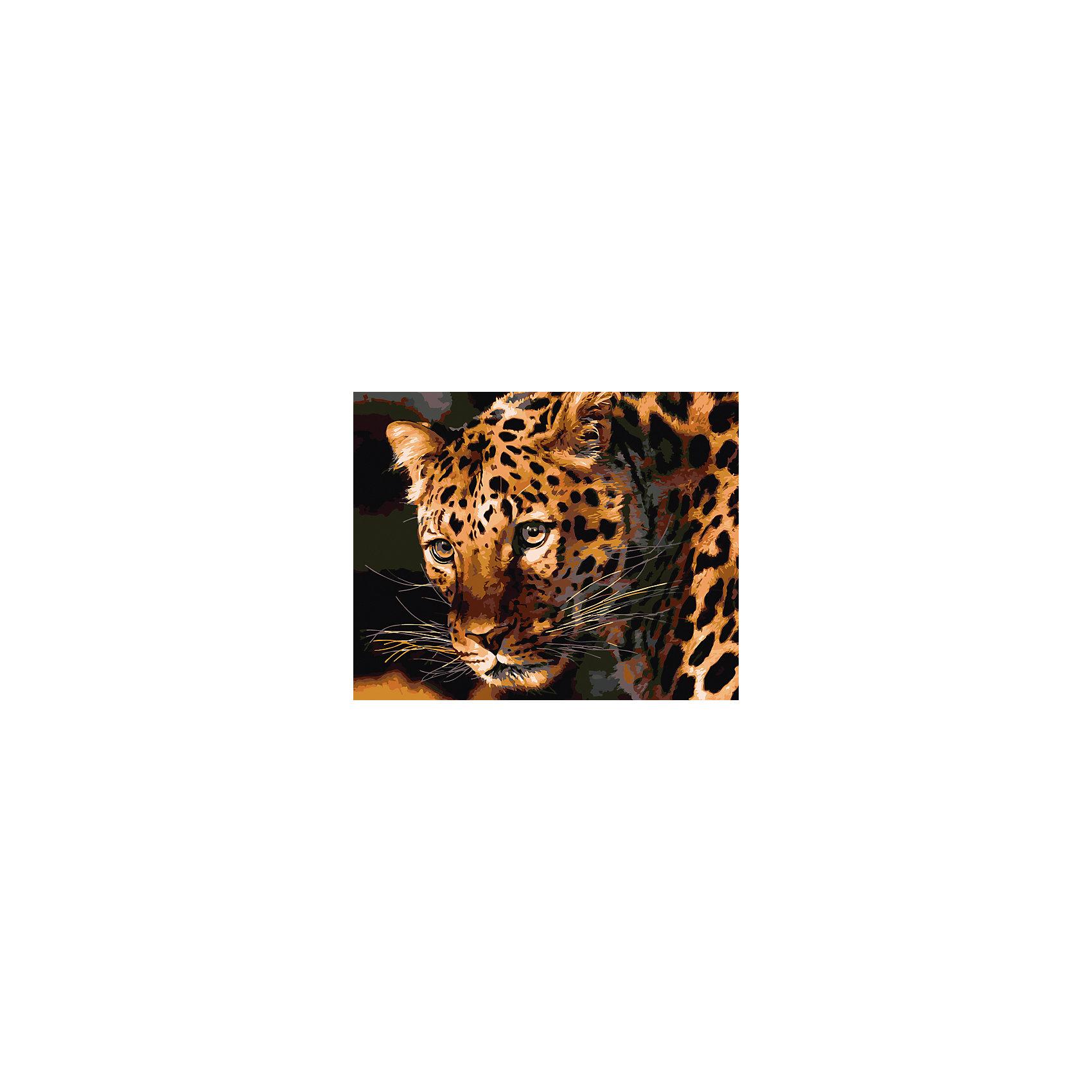 Холст с красками по номерам Взгляд леопарда 40х50 смзамечательные наборы для создания уникального шедевра изобразительного искусства. Создание картин на специально подготовленной рабочей поверхности – это уникальная техника, позволяющая делать Ваши шедевры более яркими и реалистичными. Просто нанесите мазки на уже готовый эскиз и оживите картину! Готовые изделия могут стать украшением интерьера или прекрасным подарком близким и друзьям.<br><br>Ширина мм: 510<br>Глубина мм: 410<br>Высота мм: 25<br>Вес г: 1800<br>Возраст от месяцев: 36<br>Возраст до месяцев: 108<br>Пол: Унисекс<br>Возраст: Детский<br>SKU: 5096758
