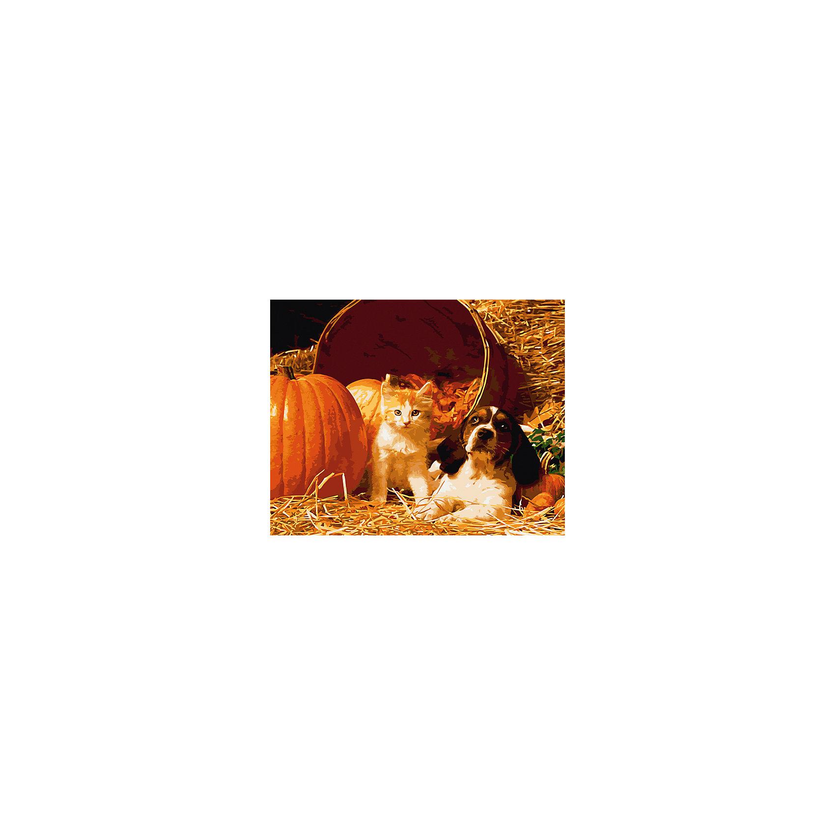 Холст с красками по номерам Котенок и щенок 40х50 смзамечательные наборы для создания уникального шедевра изобразительного искусства. Создание картин на специально подготовленной рабочей поверхности – это уникальная техника, позволяющая делать Ваши шедевры более яркими и реалистичными. Просто нанесите мазки на уже готовый эскиз и оживите картину! Готовые изделия могут стать украшением интерьера или прекрасным подарком близким и друзьям.<br><br>Ширина мм: 510<br>Глубина мм: 410<br>Высота мм: 25<br>Вес г: 900<br>Возраст от месяцев: 36<br>Возраст до месяцев: 108<br>Пол: Унисекс<br>Возраст: Детский<br>SKU: 5096772