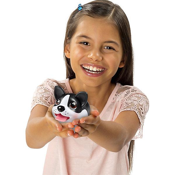 Коллекционная фигурка Спаниель, Chubby PuppiesИгровые фигурки животных<br>Характеристики товара:<br><br>- цвет: разноцветный;<br>- материал: пластик;<br>- размер упаковки: 15х8х11 см;<br>- вес: 200 г;<br>- комплектация: большая и маленькая фигурки. <br><br>Игрушки от бренда Chubby Puppies - это симпатичные собачки, которые умеют забавно двигаться. Эта игрушка очень качественно выполнена, поэтому она станет отличным подарком ребенку. Такое изделие отлично тренирует у ребенка разные навыки: играя с ней, малыш развивает мелкую моторику, цветовосприятие, внимание, воображение и творческое мышление.<br>Данная модель дополнена маленькой копией животного! Из этих фигурок можно собрать целую коллекцию! Изделие произведено из высококачественного материала, безопасного для детей.<br><br>Коллекционную фигурку Спаниель от бренда Chubby Puppies можно купить в нашем интернет-магазине.<br><br>Ширина мм: 80<br>Глубина мм: 110<br>Высота мм: 150<br>Вес г: 195<br>Возраст от месяцев: 36<br>Возраст до месяцев: 2147483647<br>Пол: Унисекс<br>Возраст: Детский<br>SKU: 5097948