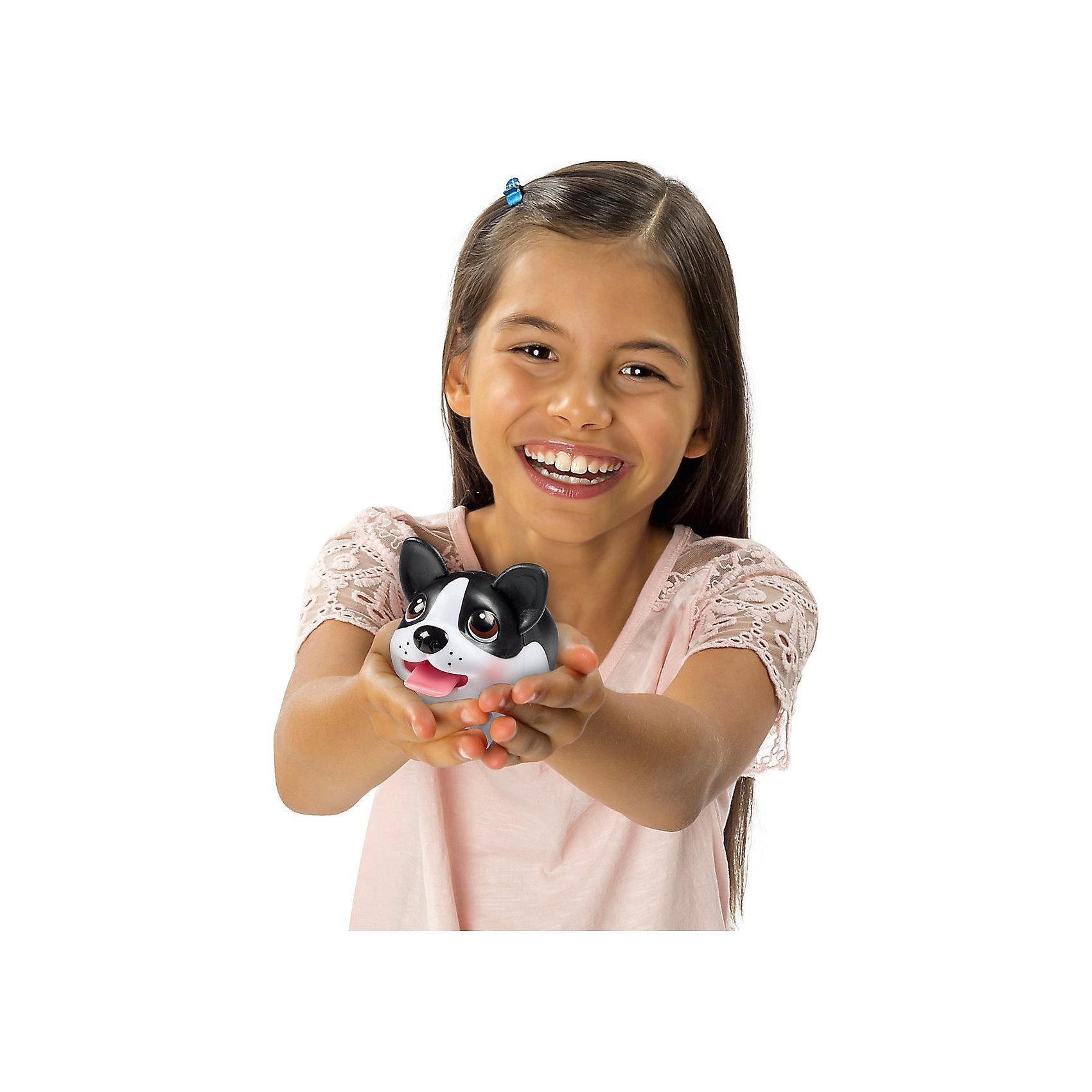Коллекционная фигурка Спаниель, Chubby PuppiesМир животных<br>Характеристики товара:<br><br>- цвет: разноцветный;<br>- материал: пластик;<br>- размер упаковки: 15х8х11 см;<br>- вес: 200 г;<br>- комплектация: большая и маленькая фигурки. <br><br>Игрушки от бренда Chubby Puppies - это симпатичные собачки, которые умеют забавно двигаться. Эта игрушка очень качественно выполнена, поэтому она станет отличным подарком ребенку. Такое изделие отлично тренирует у ребенка разные навыки: играя с ней, малыш развивает мелкую моторику, цветовосприятие, внимание, воображение и творческое мышление.<br>Данная модель дополнена маленькой копией животного! Из этих фигурок можно собрать целую коллекцию! Изделие произведено из высококачественного материала, безопасного для детей.<br><br>Коллекционную фигурку Спаниель от бренда Chubby Puppies можно купить в нашем интернет-магазине.<br><br>Ширина мм: 80<br>Глубина мм: 110<br>Высота мм: 150<br>Вес г: 195<br>Возраст от месяцев: 36<br>Возраст до месяцев: 2147483647<br>Пол: Унисекс<br>Возраст: Детский<br>SKU: 5097948