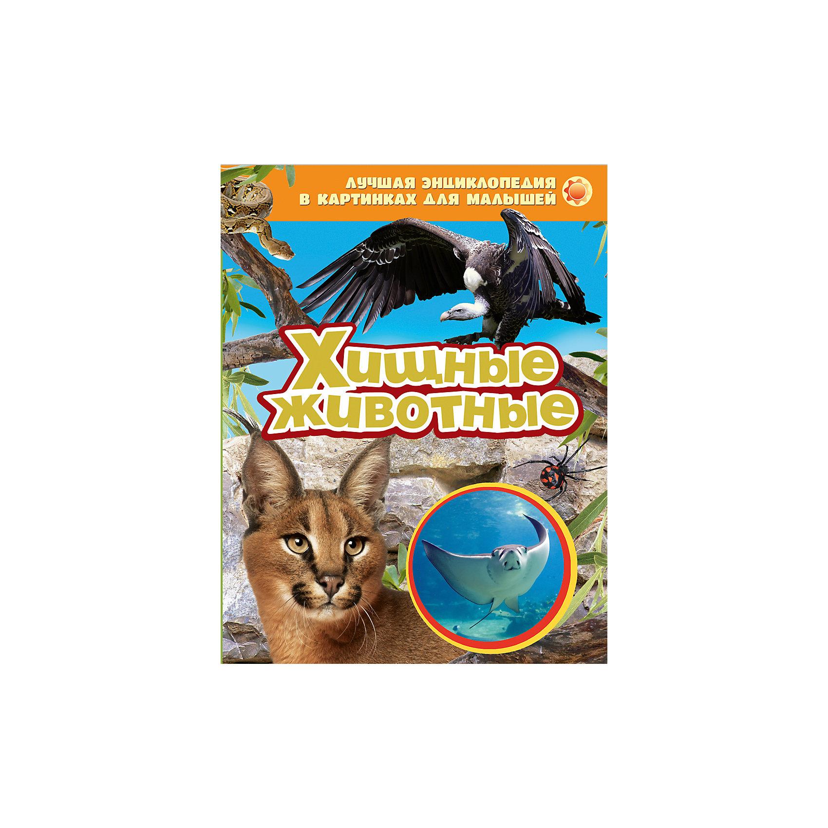 Росмэн Хищные животные росмэн лучшая энциклопедия в картинках для малышей подводный мир