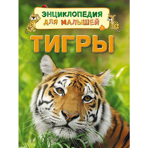 Энциклопедия для малышей ТигрыДетские энциклопедии<br>Энциклопедия для малышей Тигры<br><br>Характеристики:<br><br>- издательство Росмэн<br>- количество страниц: 32<br>- формат: 22 * 0,7 * 17 см.<br>- Тип обложки: 7Бц – твердая целлофинированная<br>- Иллюстрации: цветные<br>- вес: 190 гр.<br><br>Книга Тигры из серии Энциклопедия для малышей придет по вкусу как любителям серии, так и новичкам. Эта детская книга включает в себя множество цветных иллюстраций, которые делают информацию в книге интересной, наглядной и запоминающейся. Книга расскажет о тиграх и какие они бывают, о том, как они произошли и где они обитают. Книга расскажет о строении тела тигров и об особенностях их жизни. Энциклопедия расскажет о маленьких тигрятах и поможет понять в чем сходства и отличия тигров от домашних кошек.<br><br>Энциклопедию для малышей Тигры можно купить в нашем интернет-магазине.<br>Ширина мм: 220; Глубина мм: 167; Высота мм: 7; Вес г: 190; Возраст от месяцев: 36; Возраст до месяцев: 72; Пол: Унисекс; Возраст: Детский; SKU: 5109700;