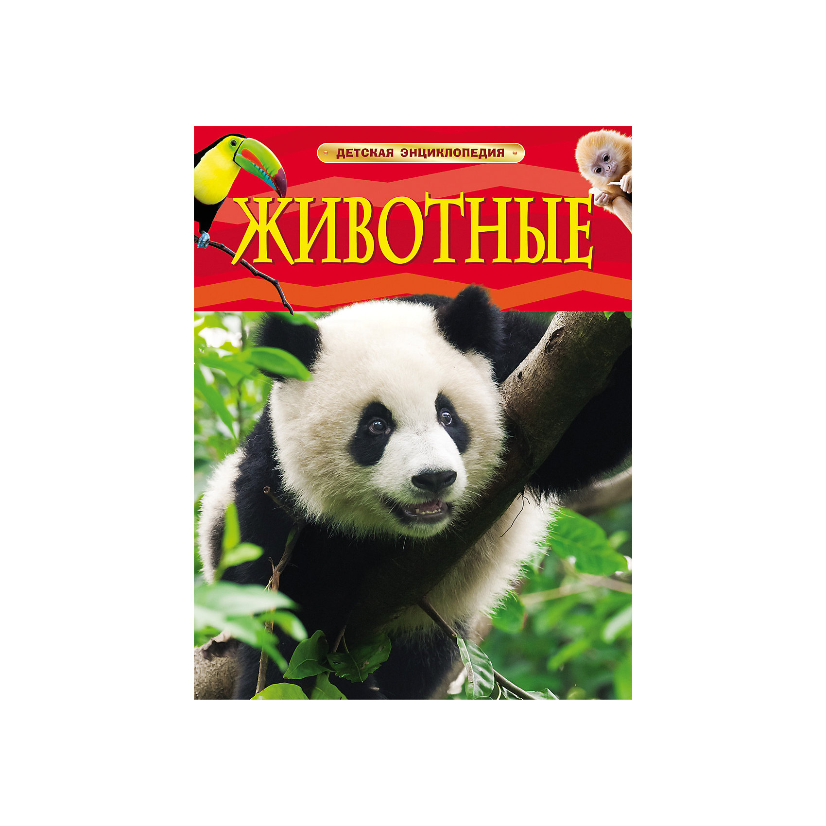 Росмэн Детская энциклопедия Животные книга новая детская энциклопедия