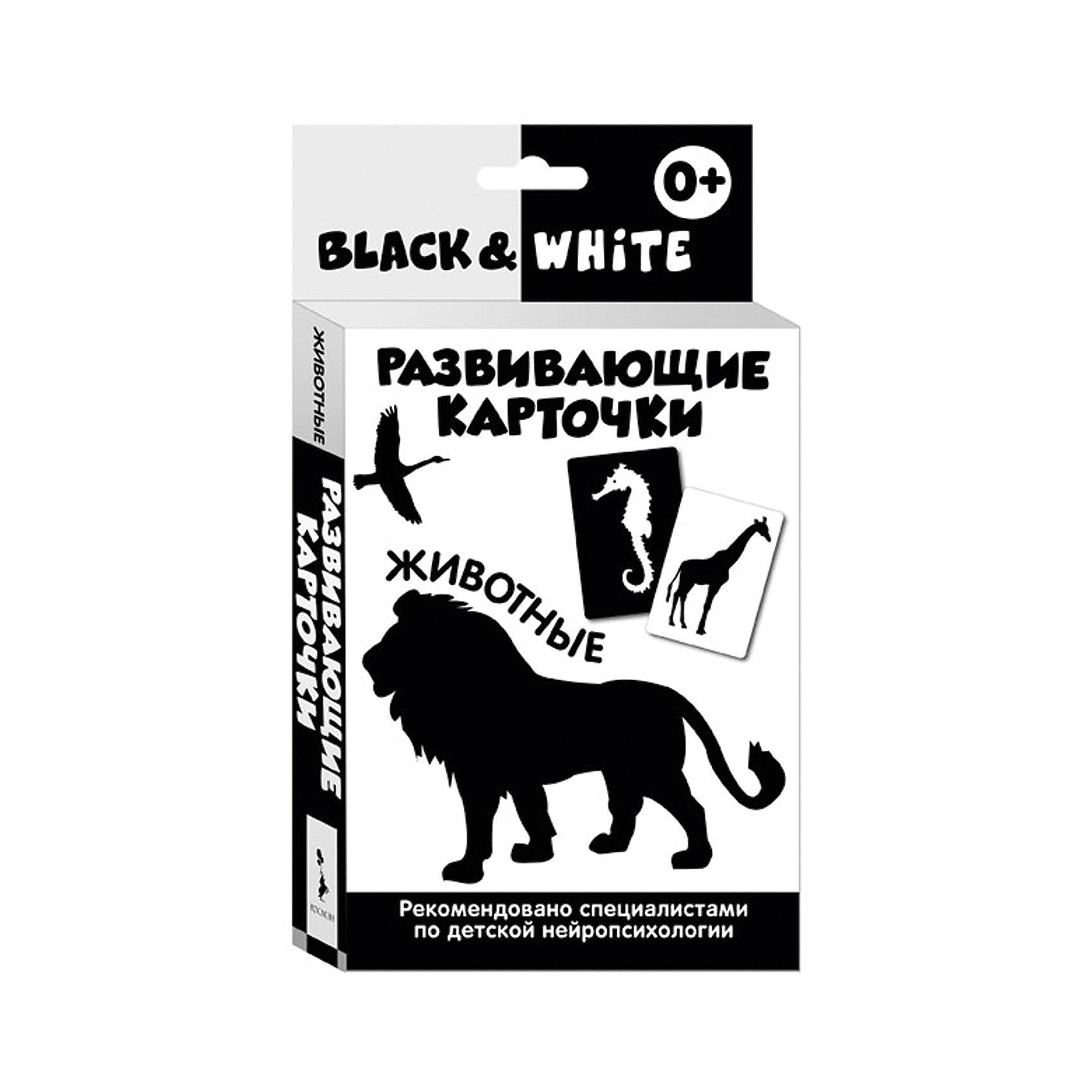 Развивающие карточки Black &amp; White. ЖивотныеРосмэн<br>Характеристики товара:<br><br>- цвет: черно-белый;<br>- материал: бумага;<br>- количество карточек: 16;<br>- формат: 20,0 x 11,2 см;<br>- возраст: 0+;<br>- обложка: картонная коробка.<br><br>Развивающие карточки – отличный вариант для раннего обучения ребенка и дальнейшей его подготовке школе. Набор тренирует зрительную память и восприятие. Комплект содержит 16 карточек с контрастными изображениями из картона. В наборе есть инструкция для родителей, разработанная специализированными нейропсихологами. Все материалы, использованные при производстве издания, соответствуют всем стандартам качества и безопасности. <br><br>Издание Развивающие карточки Black &amp; White. Животные от компании Росмэн можно приобрести в нашем интернет-магазине.<br><br>Ширина мм: 200<br>Глубина мм: 112<br>Высота мм: 20<br>Вес г: 220<br>Возраст от месяцев: 0<br>Возраст до месяцев: 36<br>Пол: Унисекс<br>Возраст: Детский<br>SKU: 5109863