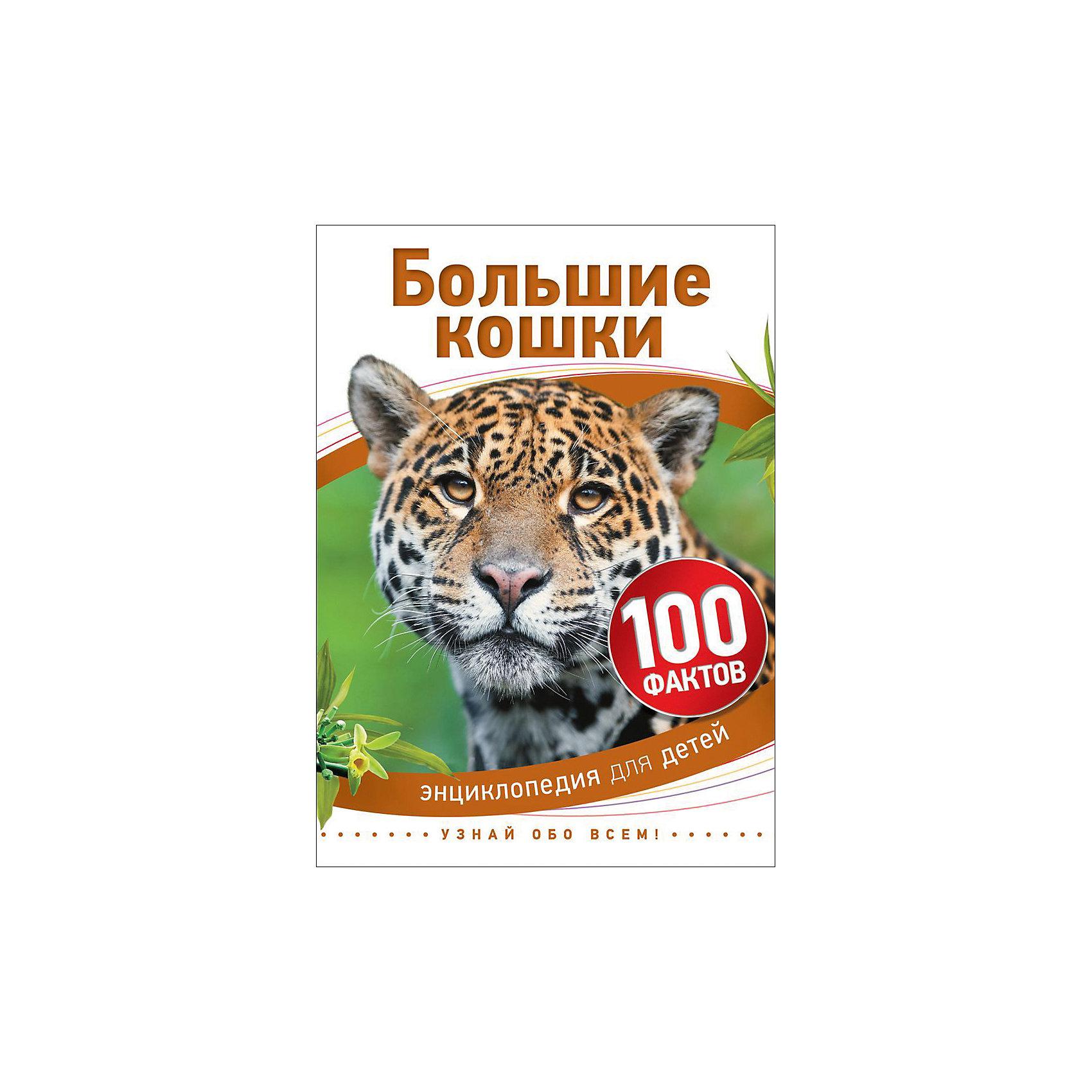 Большие кошки (100 фактов)Характеристики товара:<br><br>- цвет: разноцветный;<br>- материал: бумага;<br>- страниц: 48;<br>- формат: 17 х 21 см;<br>- обложка: твердая;<br>- иллюстрации.<br><br>Эта интересная книга с иллюстрациями станет отличным подарком для ребенка. Она содержит в себе ответы на вопросы, которые интересуют малышей. Всё представлено в очень простой форме! Талантливый иллюстратор дополнил книгу качественными рисунками, которые помогают ребенку понять суть многих вещей в нашем мире. Удивительные и интересные факты помогут привить любовь к учебе!<br>Чтение - отличный способ активизации мышления, оно помогает ребенку развивать зрительную память, концентрацию внимания и воображение. Издание произведено из качественных материалов, которые безопасны даже для самых маленьких.<br><br>Книгу Большие кошки (100 фактов) от компании Росмэн можно купить в нашем интернет-магазине.<br><br>Ширина мм: 220<br>Глубина мм: 165<br>Высота мм: 7<br>Вес г: 200<br>Возраст от месяцев: 60<br>Возраст до месяцев: 84<br>Пол: Унисекс<br>Возраст: Детский<br>SKU: 5109946