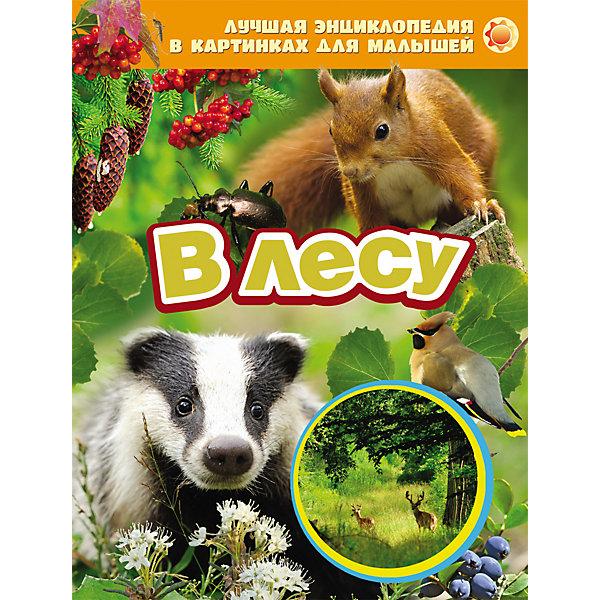 В лесуЭнциклопедии<br>Характеристики товара:<br><br>- цвет: разноцветный;<br>- материал: бумага;<br>- страниц: 24;<br>- формат: 20 х 26 см;<br>- обложка: твердая;<br>- цветные иллюстрации.<br><br>Эта интересная книга с иллюстрациями станет отличным подарком для ребенка. Она содержит в себе яркие фотографии, которые помогут малышам познакомиться со многими предметами из окружающего мира.<br>Чтение и рассматривание картинок даже в юном возрасте помогает ребенку развивать зрительную память, концентрацию внимания и воображение. Издание произведено из качественных материалов, которые безопасны даже для самых маленьких.<br><br>Энциклопедию в картинках для малышей В лесу от компании Росмэн можно купить в нашем интернет-магазине.<br><br>Ширина мм: 265<br>Глубина мм: 205<br>Высота мм: 7<br>Вес г: 291<br>Возраст от месяцев: 0<br>Возраст до месяцев: 36<br>Пол: Унисекс<br>Возраст: Детский<br>SKU: 5109954