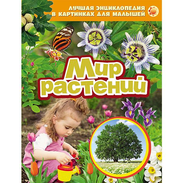Мир растенийДетские энциклопедии<br>Характеристики товара:<br><br>- цвет: разноцветный;<br>- материал: бумага;<br>- страниц: 24;<br>- формат: 20 х 26 см;<br>- обложка: твердая;<br>- цветные иллюстрации.<br><br>Эта интересная книга с иллюстрациями станет отличным подарком для ребенка. Она содержит в себе яркие фотографии, которые помогут малышам познакомиться со многими предметами из окружающего мира.<br>Чтение и рассматривание картинок даже в юном возрасте помогает ребенку развивать зрительную память, концентрацию внимания и воображение. Издание произведено из качественных материалов, которые безопасны даже для самых маленьких.<br><br>Энциклопедию в картинках для малышей Мир растений от компании Росмэн можно купить в нашем интернет-магазине.<br><br>Ширина мм: 265<br>Глубина мм: 205<br>Высота мм: 8<br>Вес г: 312<br>Возраст от месяцев: 0<br>Возраст до месяцев: 36<br>Пол: Унисекс<br>Возраст: Детский<br>SKU: 5109955