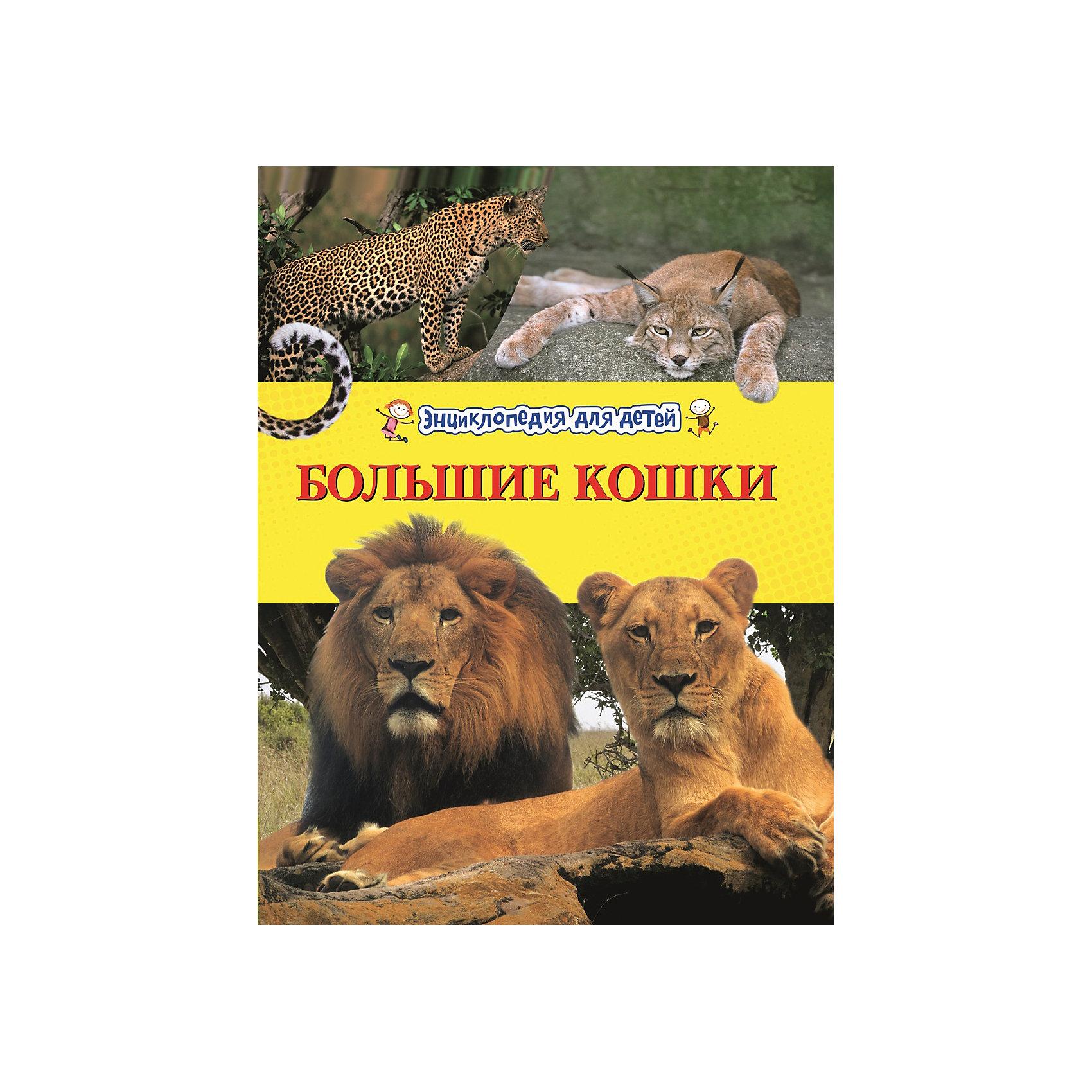 Большие кошки (Энциклопедия для детей)Характеристики товара:<br><br>- цвет: разноцветный;<br>- материал: бумага;<br>- страниц: 48;<br>- формат: 26 х 21 см;<br>- обложка: твердая;<br>- цветные иллюстрации.<br><br>Эта интересная книга с иллюстрациями станет отличным подарком для ребенка. Она содержит в себе ответы на вопросы, которые интересуют малышей. Всё представлено в очень простой форме! Талантливый иллюстратор дополнил книгу качественными рисунками, которые помогают ребенку понять суть многих вещей в нашем мире. Удивительные и интересные факты помогут привить любовь к учебе!<br>Чтение - отличный способ активизации мышления, оно помогает ребенку развивать зрительную память, концентрацию внимания и воображение. Издание произведено из качественных материалов, которые безопасны даже для самых маленьких.<br><br>Книгу Большие кошки (Энциклопедия для детей) от компании Росмэн можно купить в нашем интернет-магазине.<br><br>Ширина мм: 260<br>Глубина мм: 205<br>Высота мм: 10<br>Вес г: 331<br>Возраст от месяцев: 60<br>Возраст до месяцев: 84<br>Пол: Унисекс<br>Возраст: Детский<br>SKU: 5109957